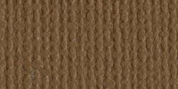 Cardstock 12x12 Walnut Canvas