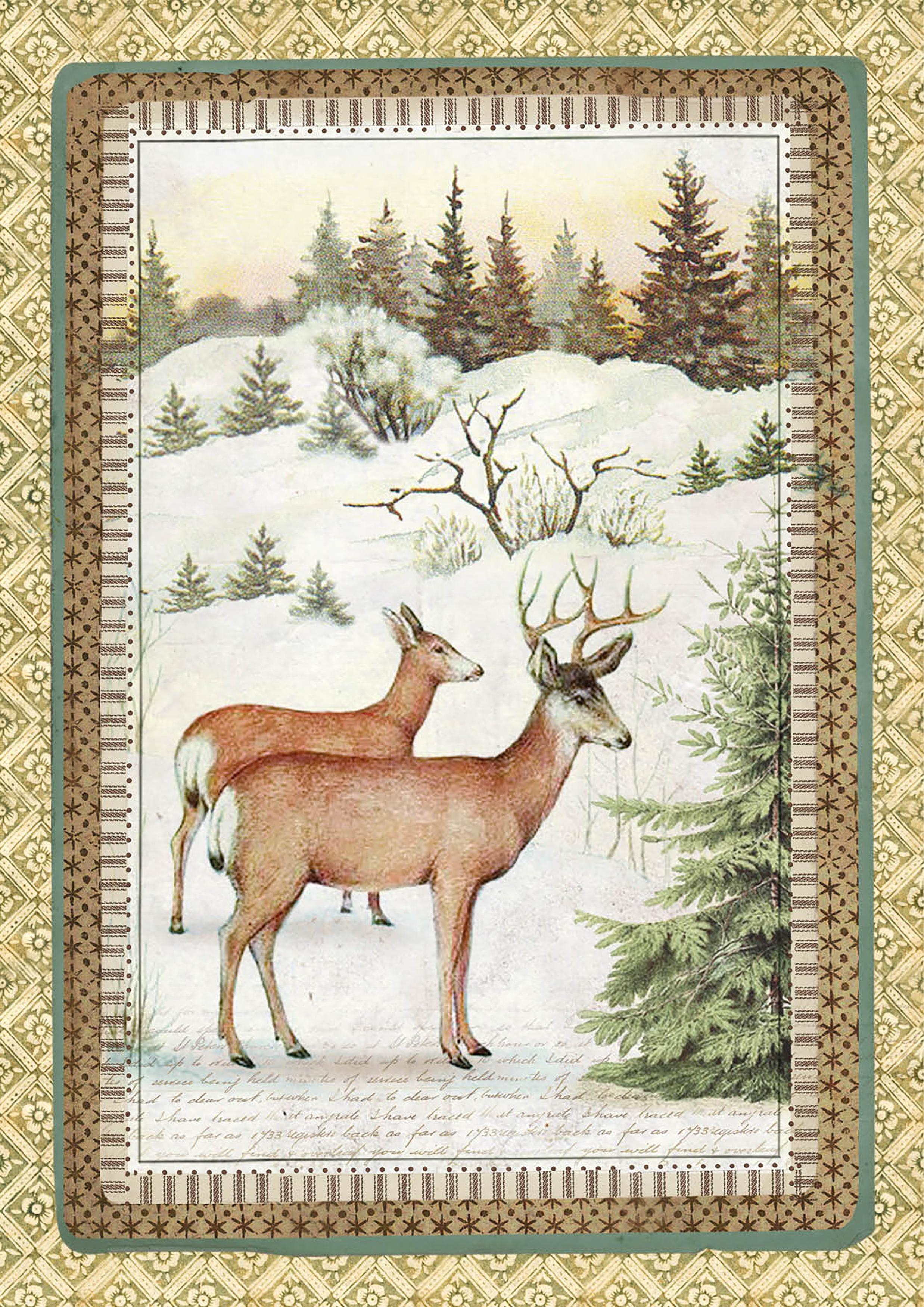 Stamperia Rice Paper Sheet A4-Winter Botanic Reindeer