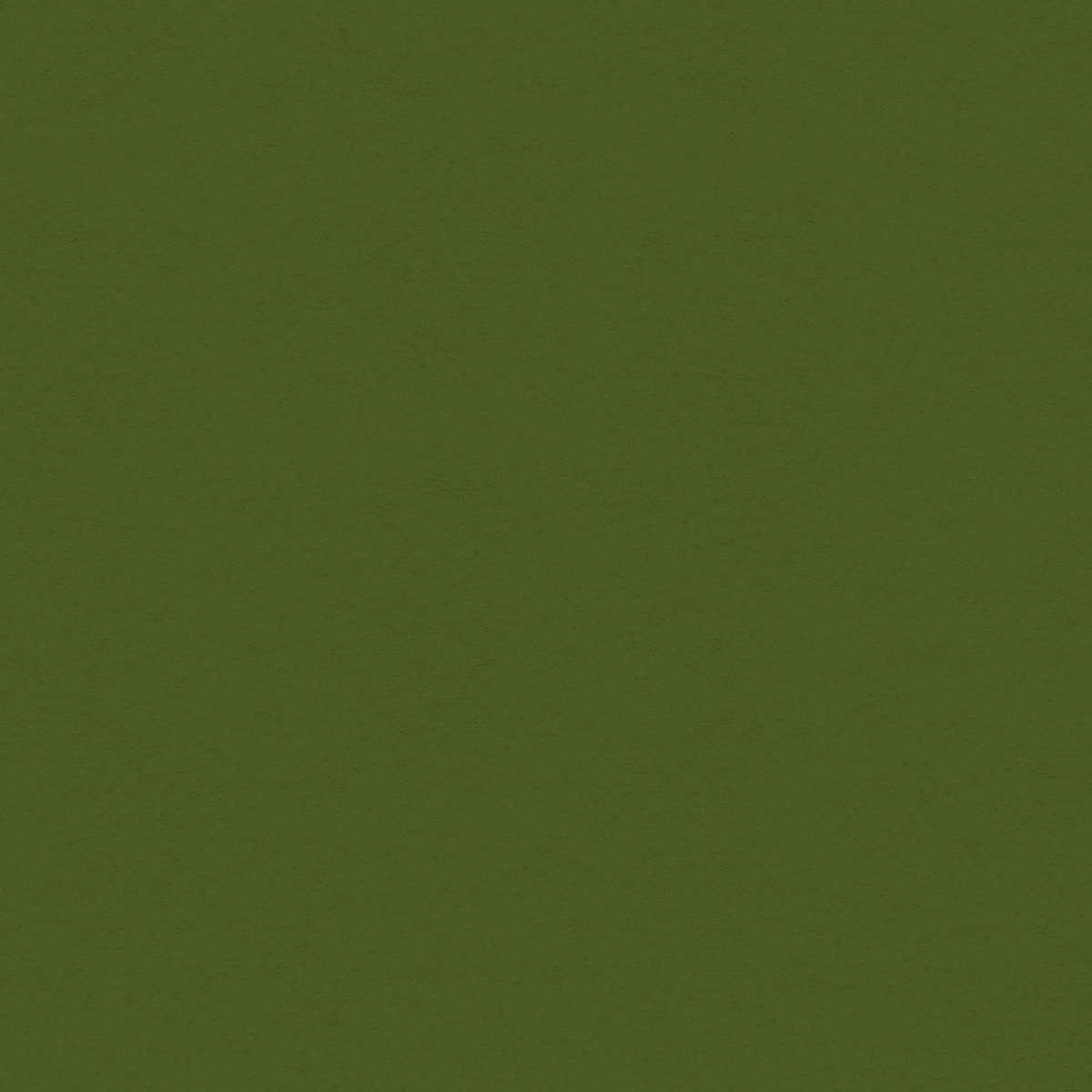 My Colors Classic 80lb Cover Weight Cardstock 12X12-Holiday Green