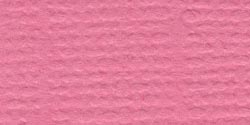 Cardstock 12x12 Piglet Grasscloth