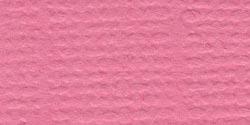Bazzill Fourz Cardstock 12X12-Piglet/Grasscloth