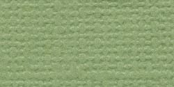 Bazzill Cardstock 12X12-Lily Pond/Grasscloth
