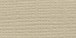 Bazzill Fourz Cardstock 12X12-Quick Sand/Grasscloth