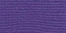 Bazzill Fourz Cardstock 12X12-Purple Pizzazz/Grasscloth