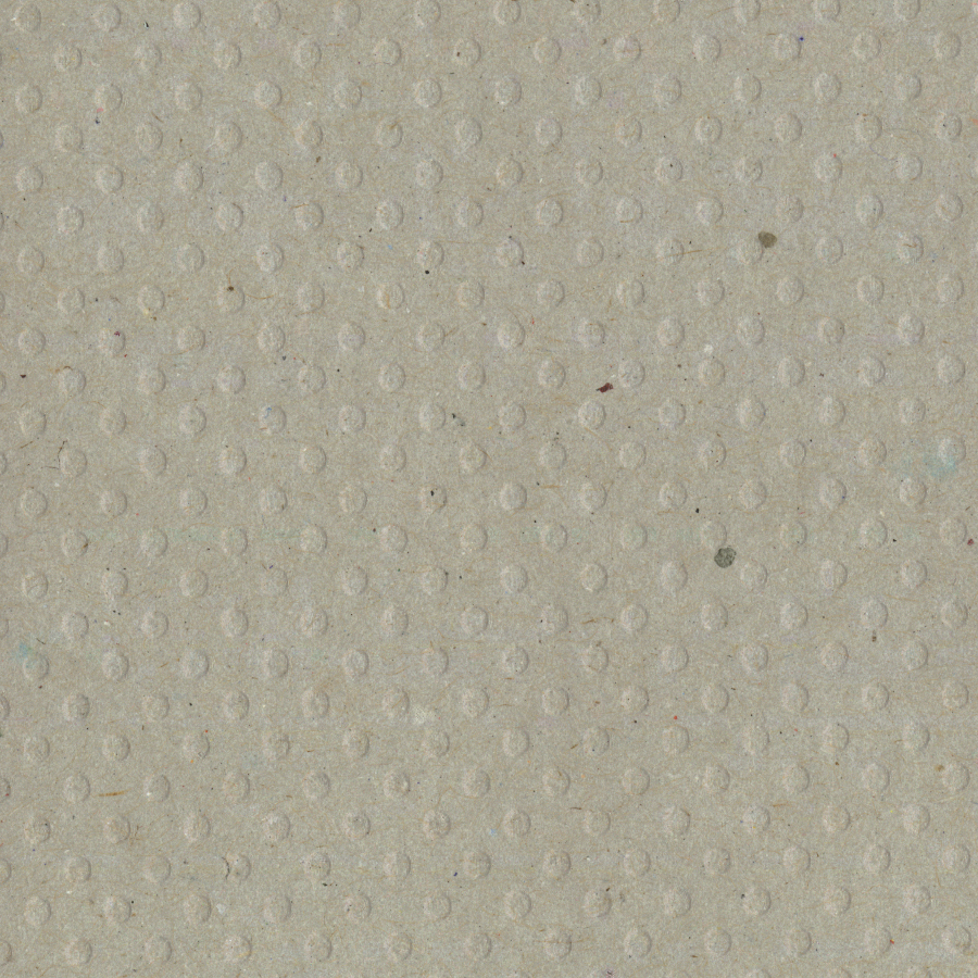 Bazzill Dotted Swiss Cardstock 12X12-Kraft/Dotted Swiss