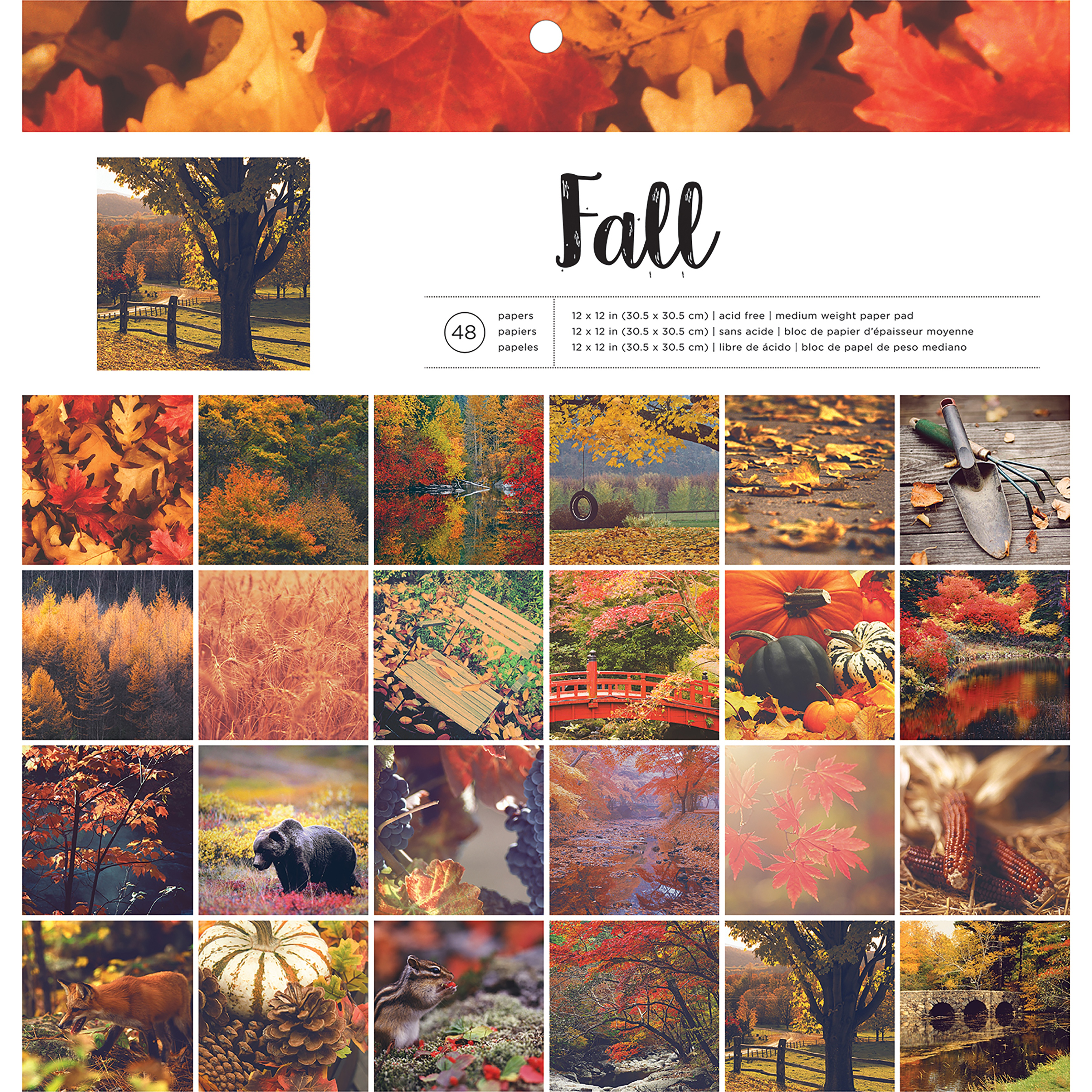 Pink Paislee FALL -PHOTO REAL PAPR PAD 12x12