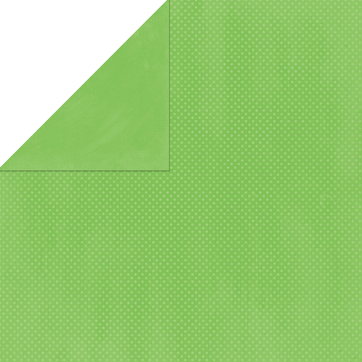 BoBunny Double Dot Double-Sided Textured Cardstock 12X12-Wasabi