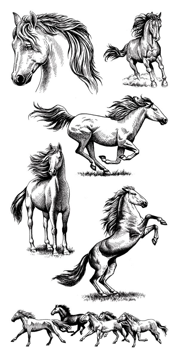 Inkadinkado Clear Stamps 4X8-Horses
