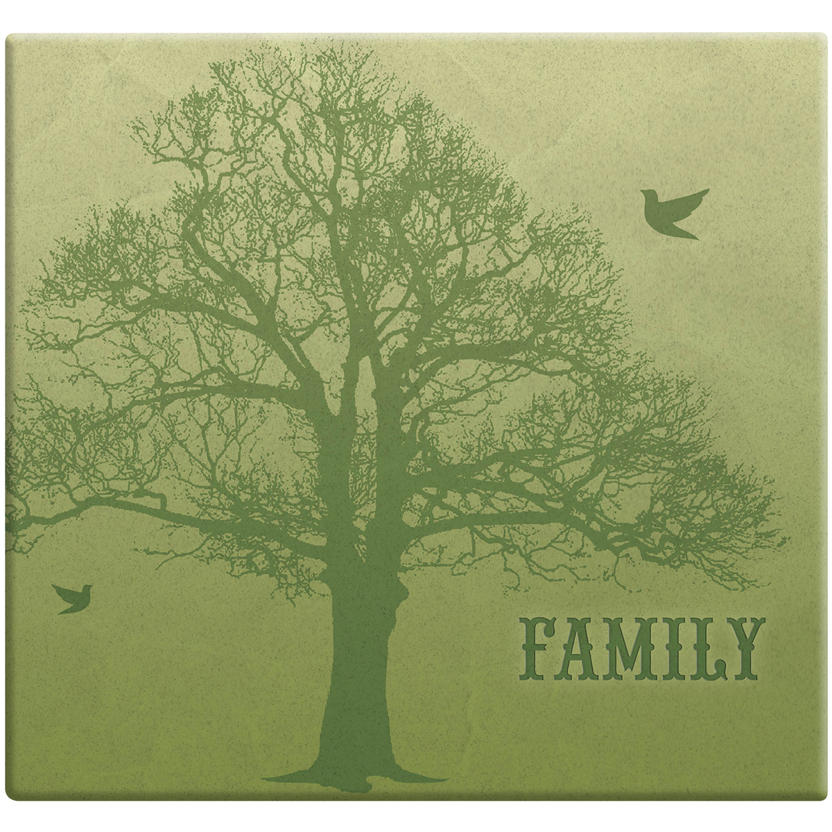 MBI Family Tree Post Bound Album W/Name Window 12X12 - Family Tree