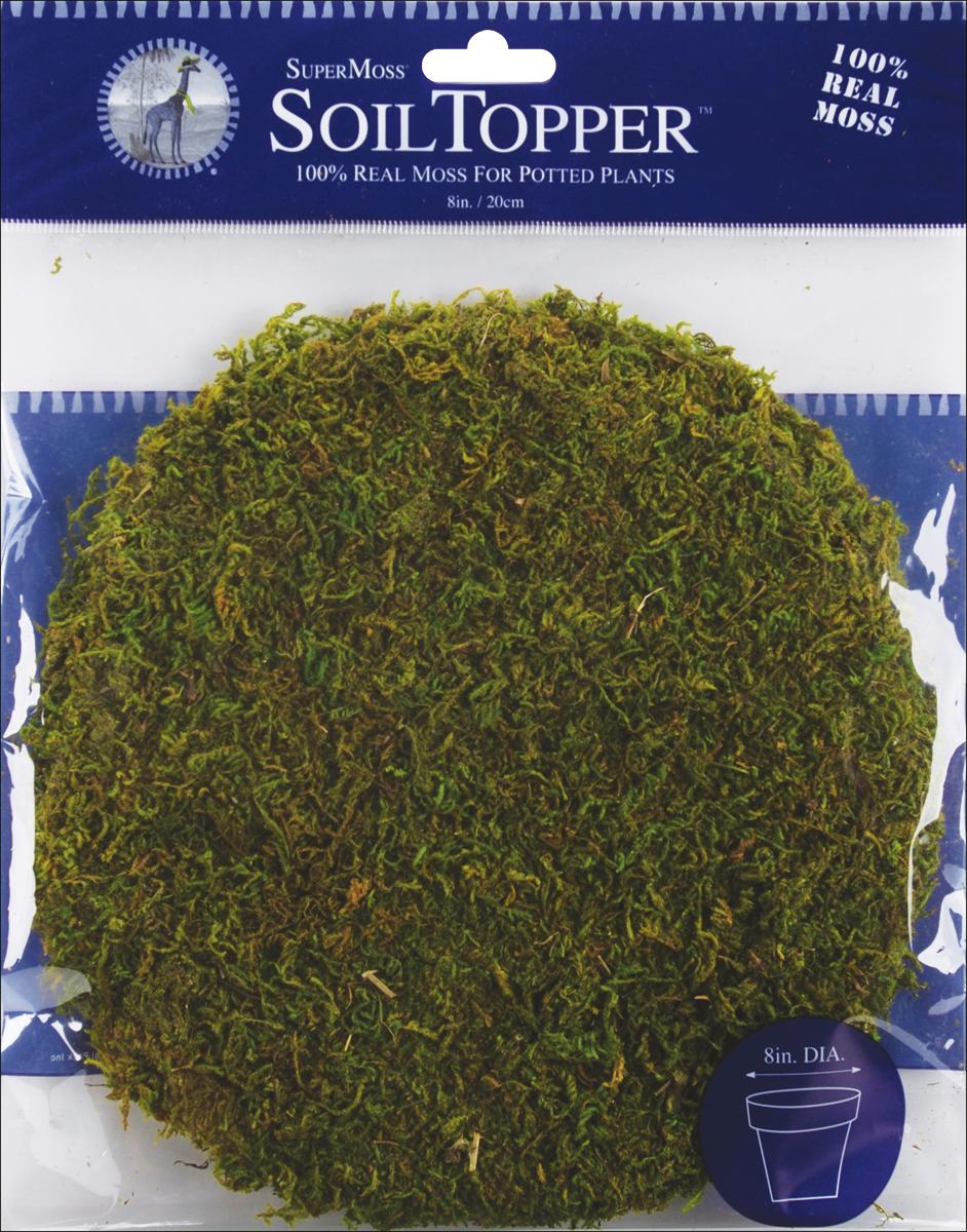 Super Moss Moss Pot Toppers 8 3/Pkg-Green