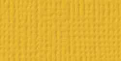 AC Cardstock - Mustard, 5/pkg - Textured 12x12