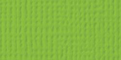 AC Cardstock - Cricket, 5/pkg - Textured, 12x12