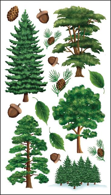 STICKO MAJESTIC TREES