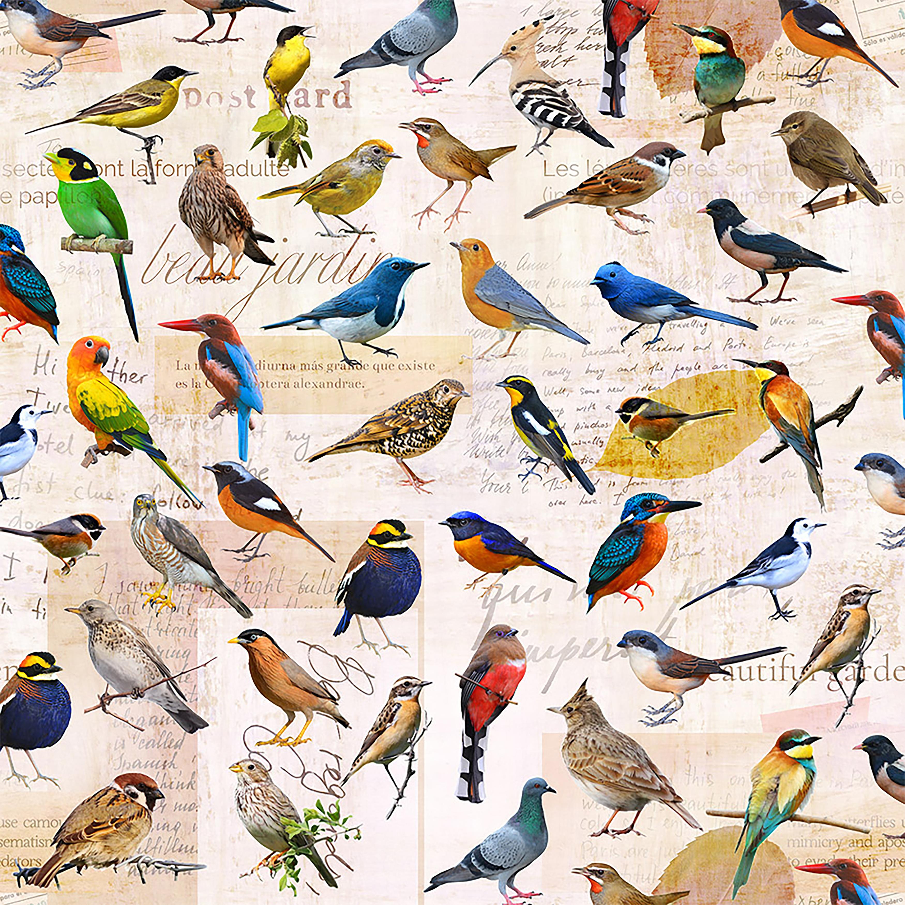 Bird Botanical