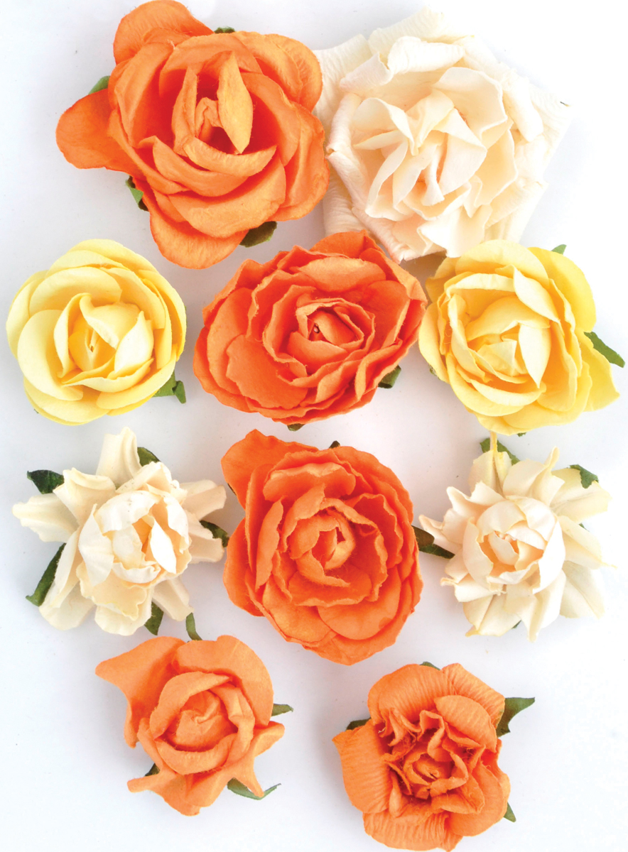 Sunset Paper Blooms