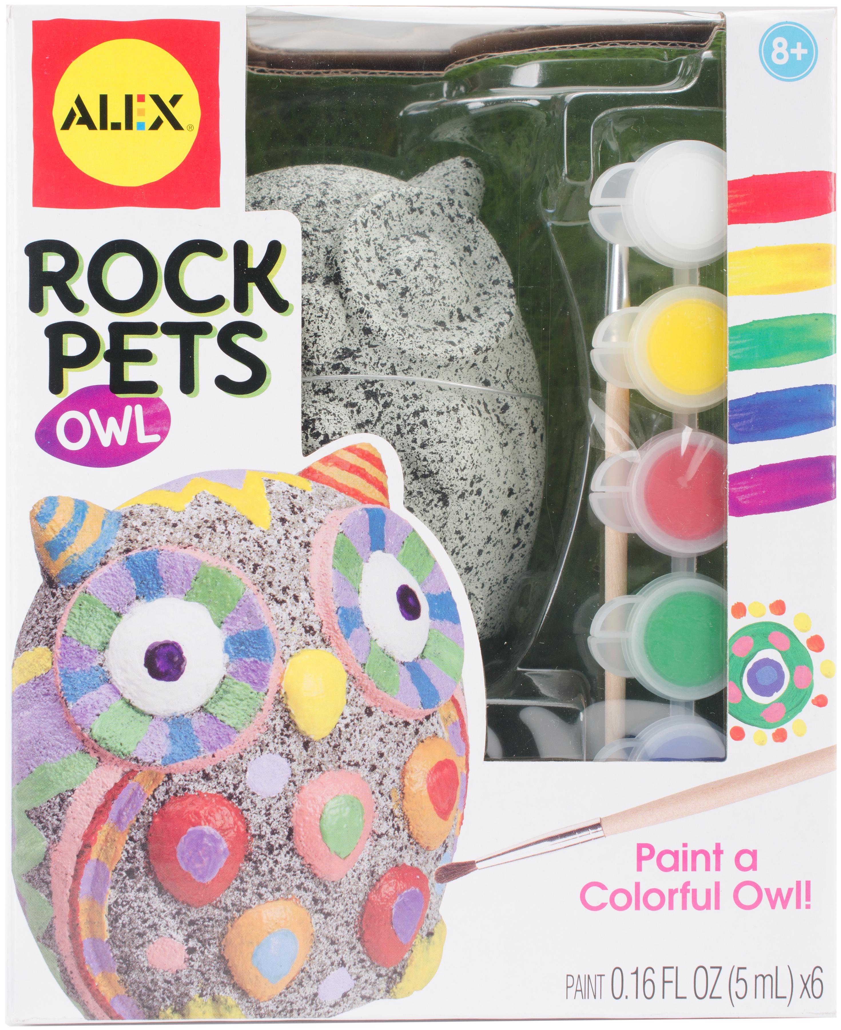OWL       -PAINT A ROCKPET