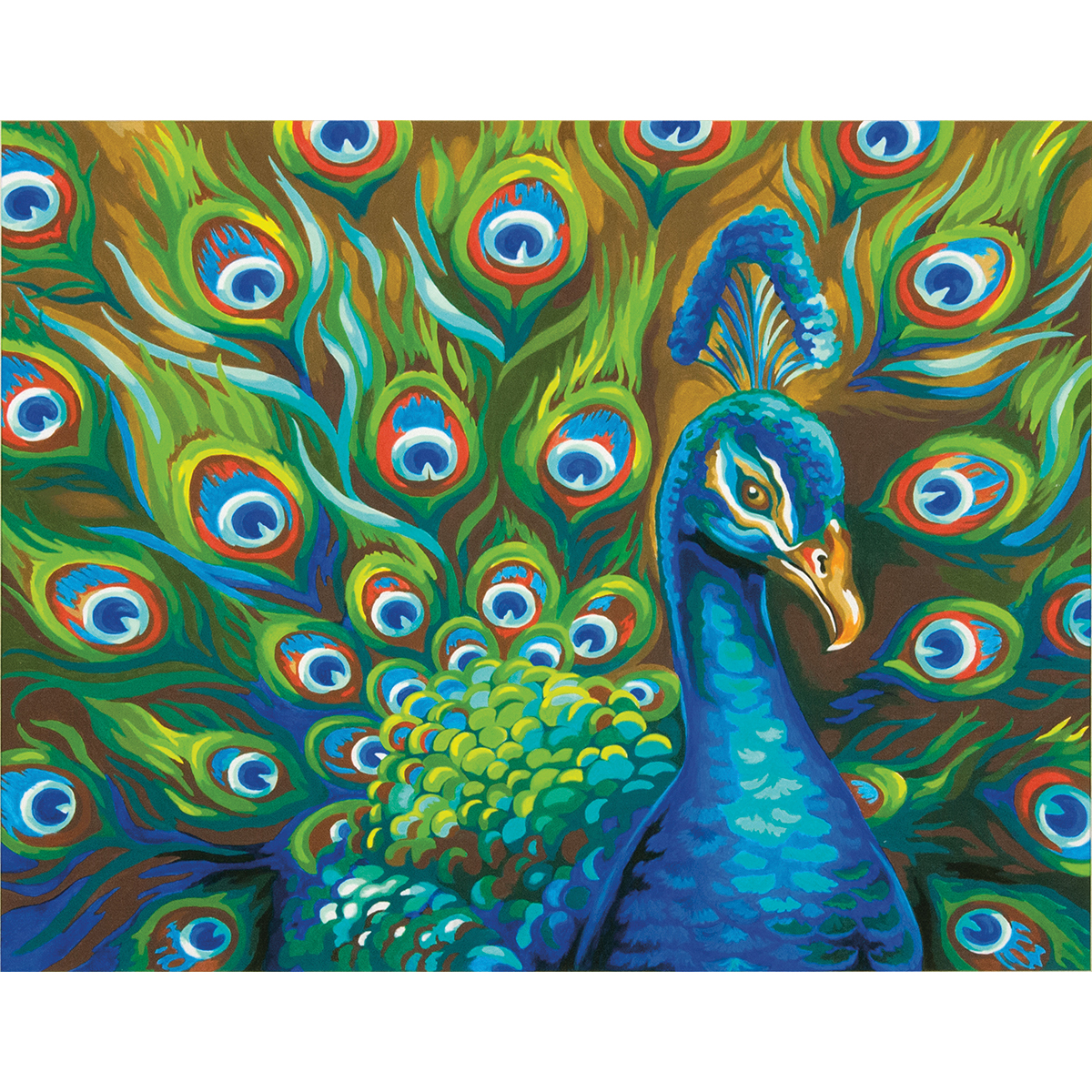 Paint Works Paint By Number Kit 14X11-Wild Feathers