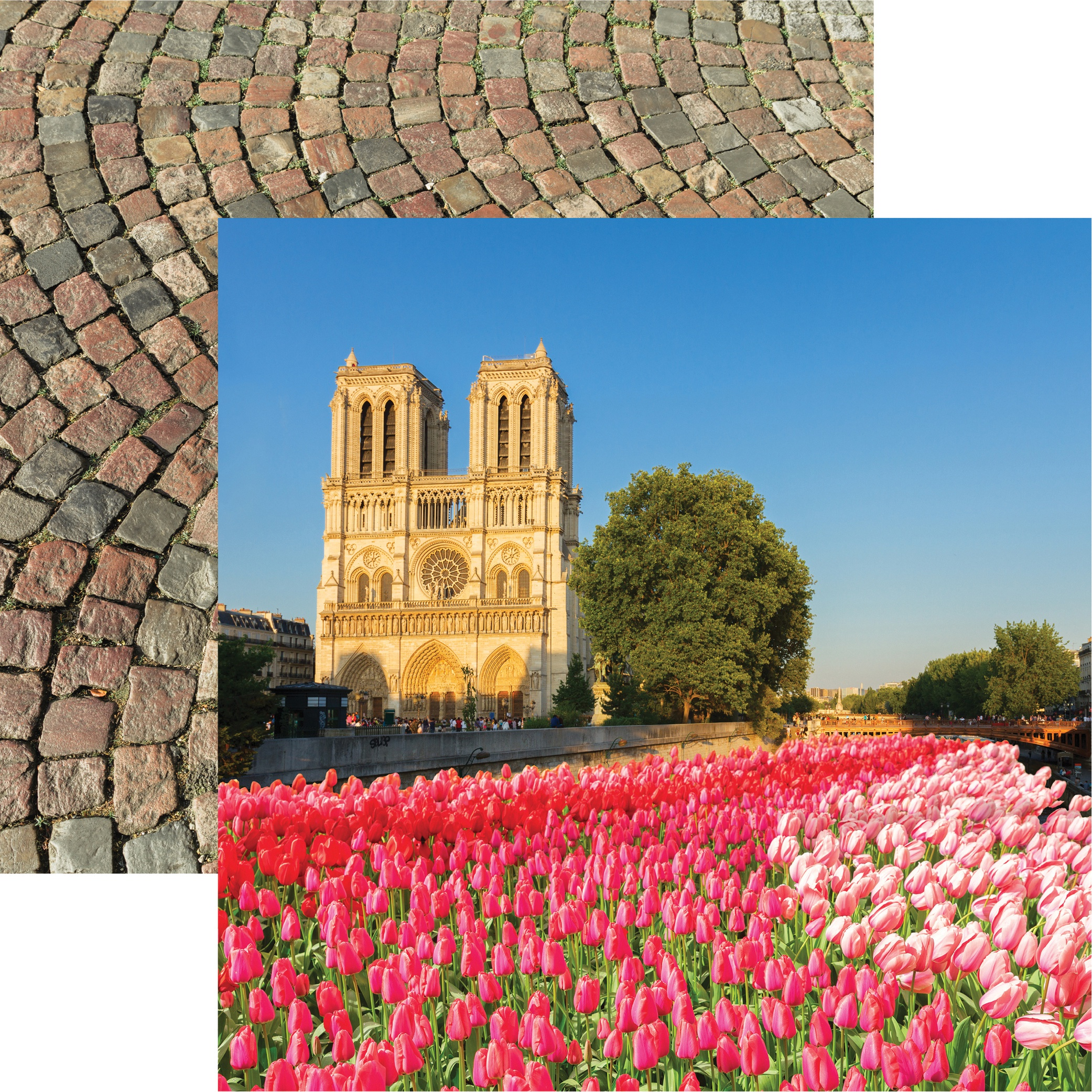 France Double-Sided Cardstock 12X12-Notre Dame
