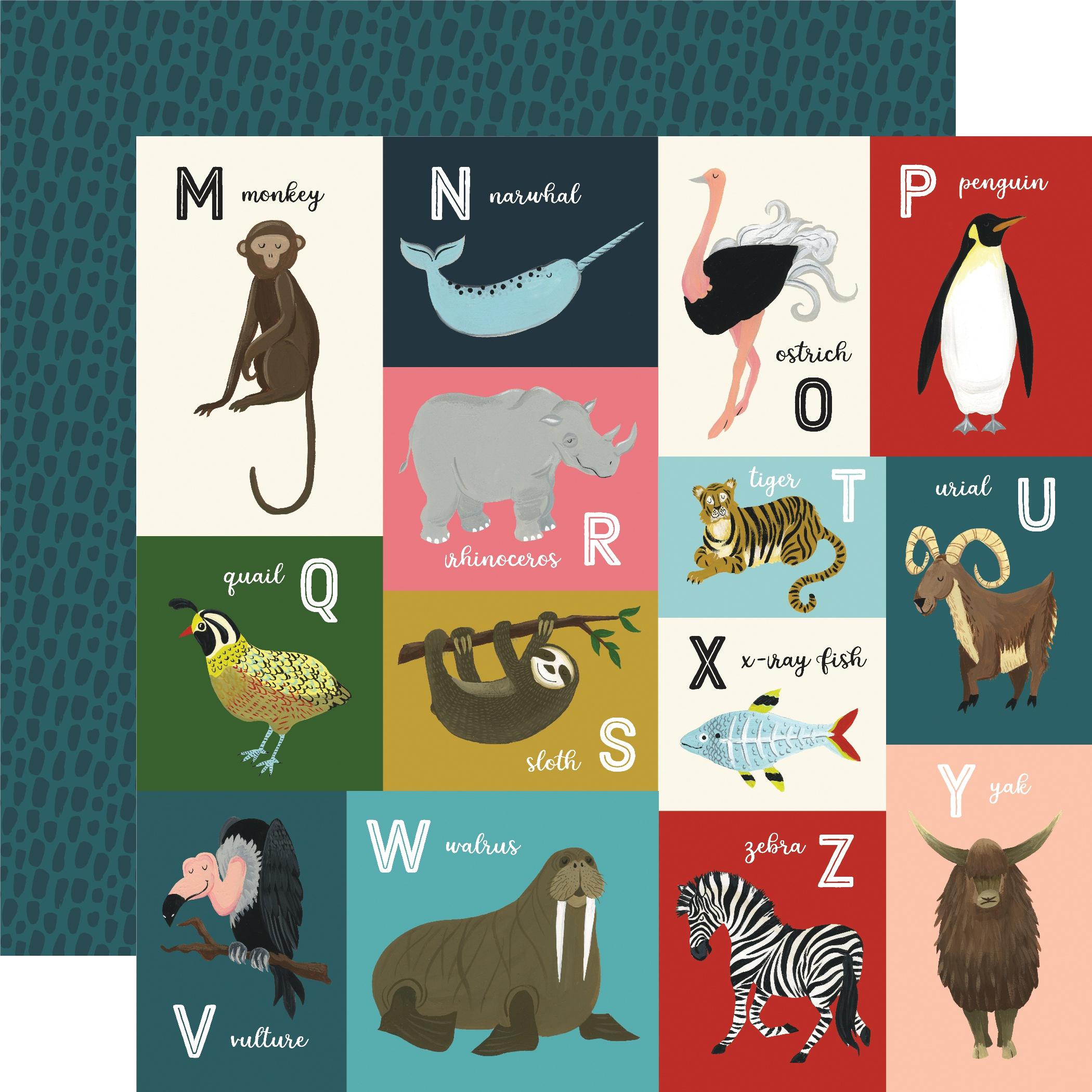 Animal Safari Double-Sided Cardstock 12X12-Animal Alphabet Cards M-Z