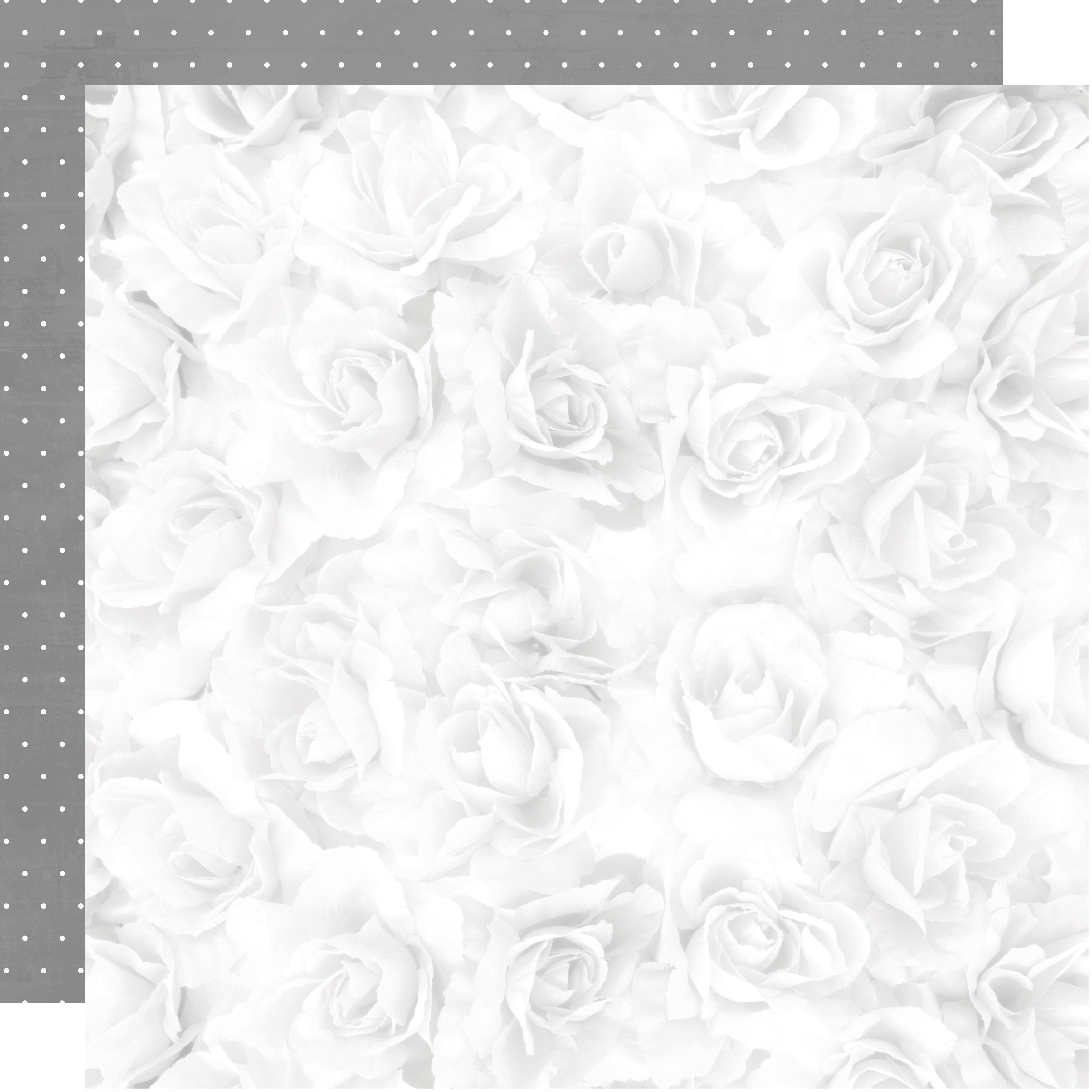 Two Souls Double-Sided Cardstock 12X12-White Rose