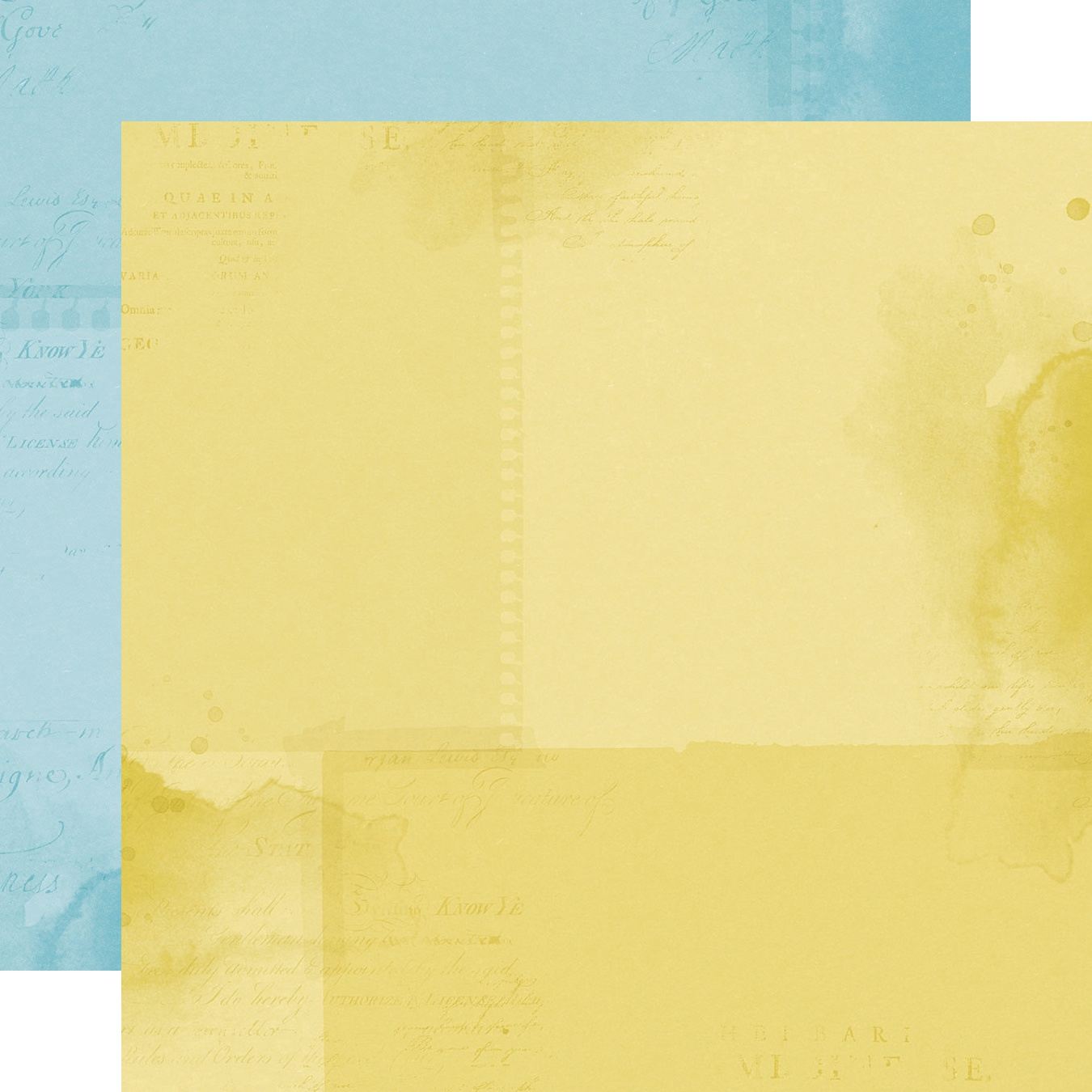 Simple Vintage Botanicals Double-Sided Cardstock 12X12-Light Blue/Yellow Simpl...