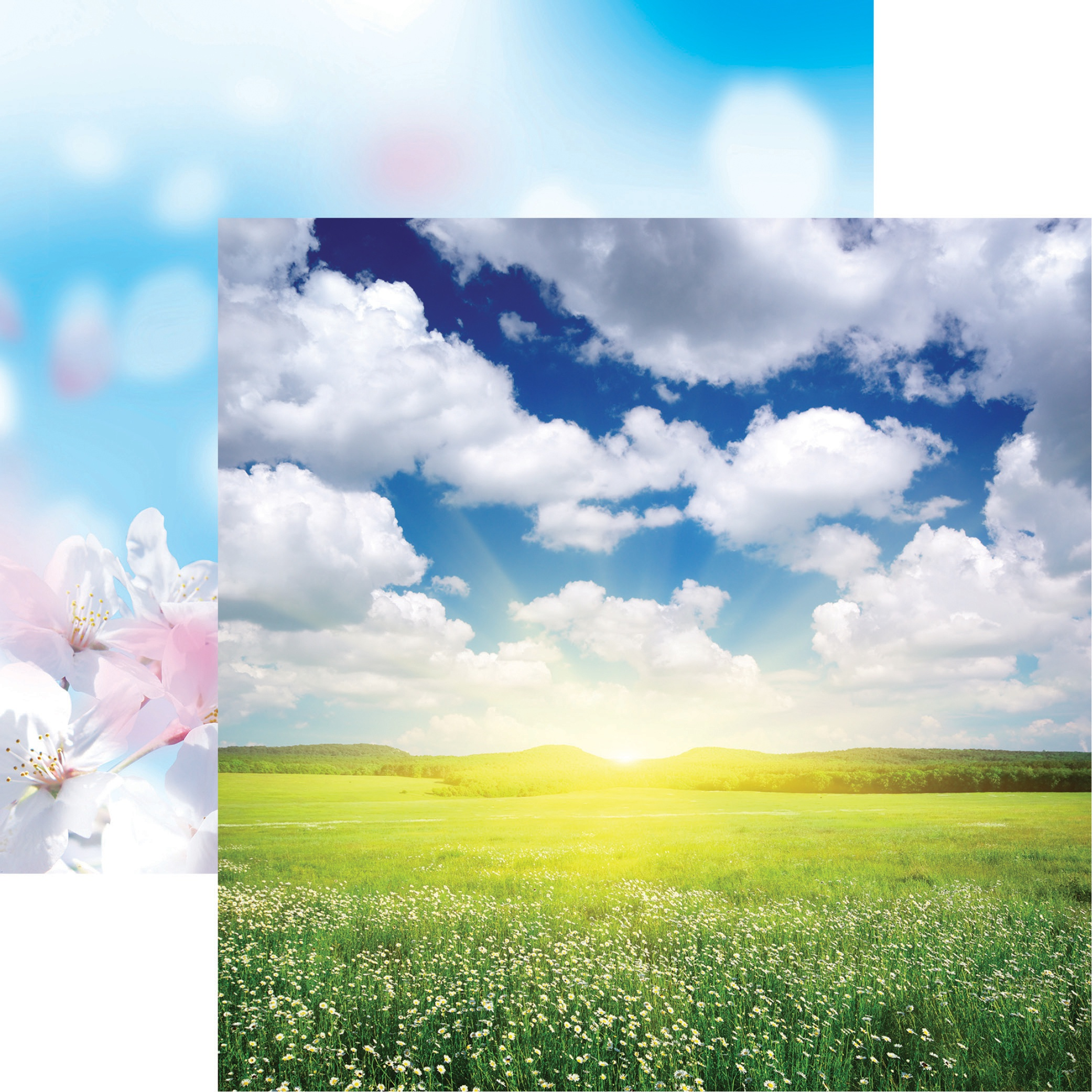 Springtime - Spring Day
