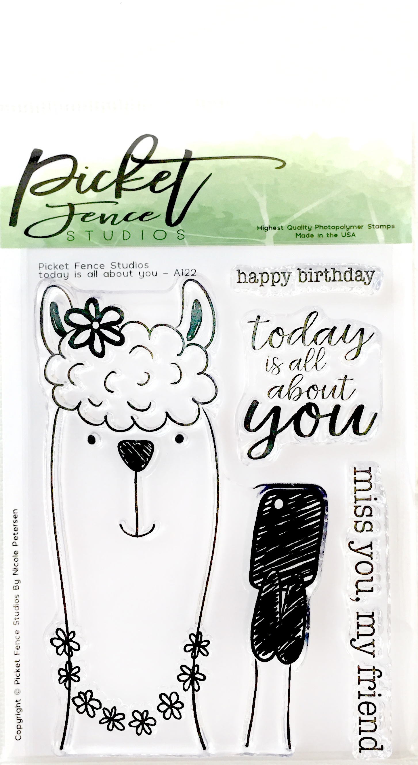 Picket Fence Studios 3X4 Stamp Set-Today Is All About You