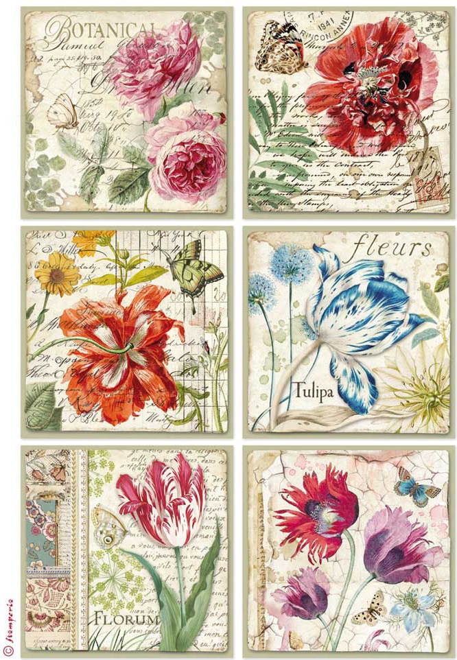 Rice Paper Sheet A4 Botanic Cards