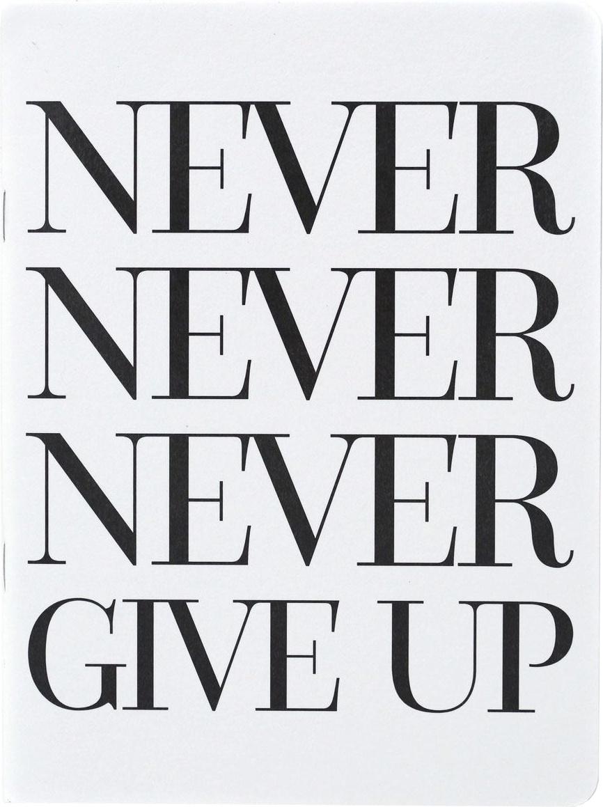 Teresa Collins Designer Notebook 6X8-Never Never Give Up