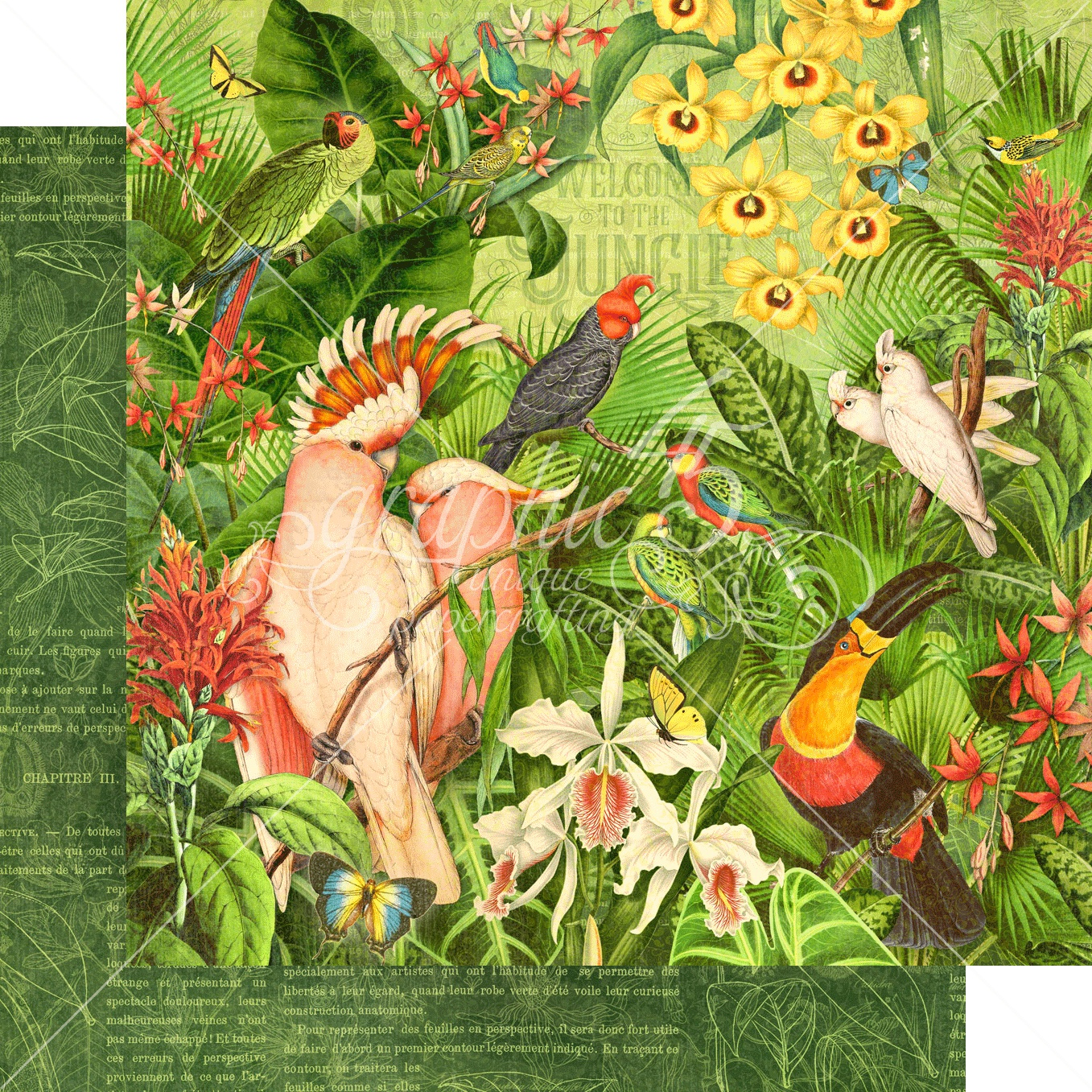 Lost In Paradise Double-Sided Cardstock 12X12-Welcome To The Jungle