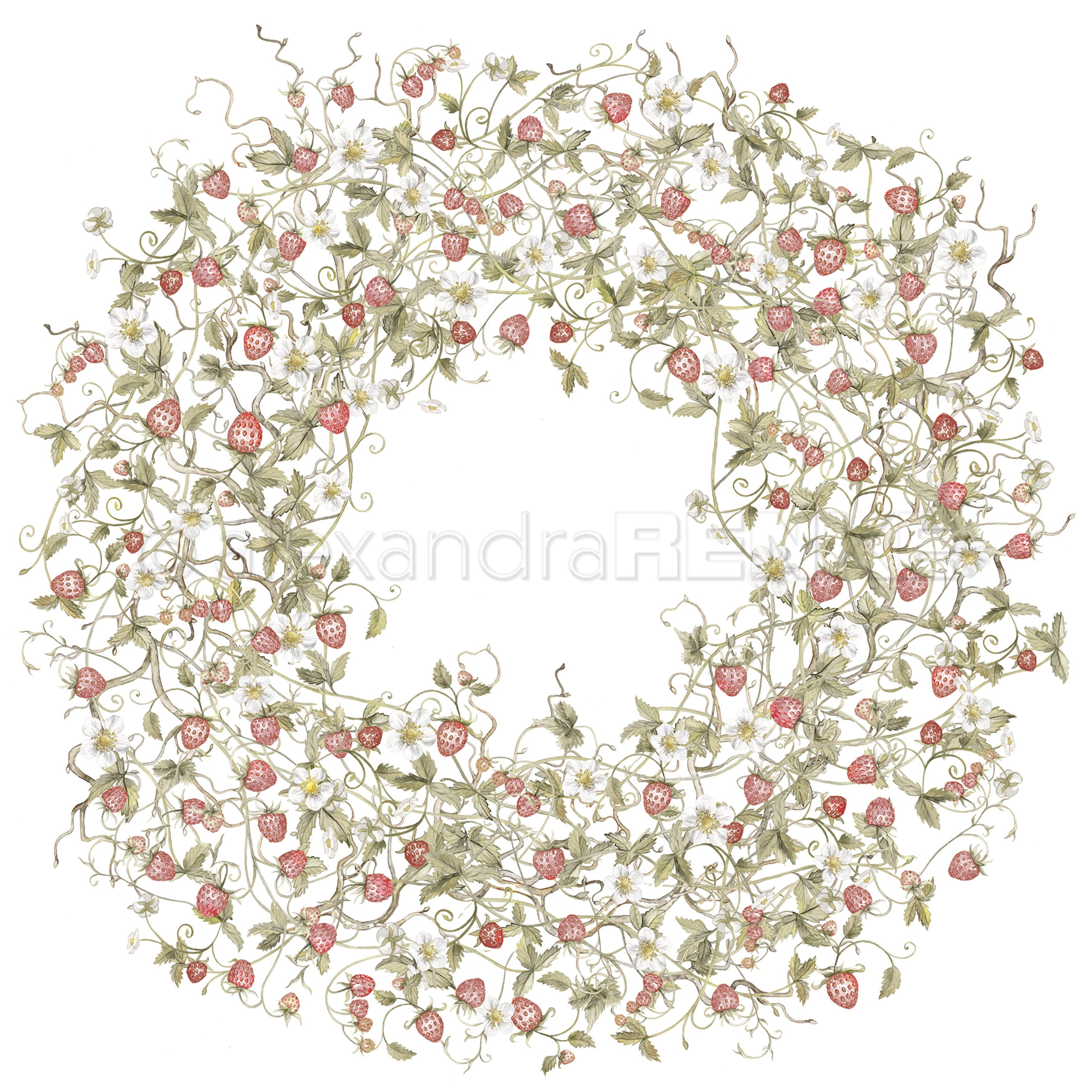 Alexandra Renke Marmalade Design Paper 12X12-Wild Strawberries Wreath