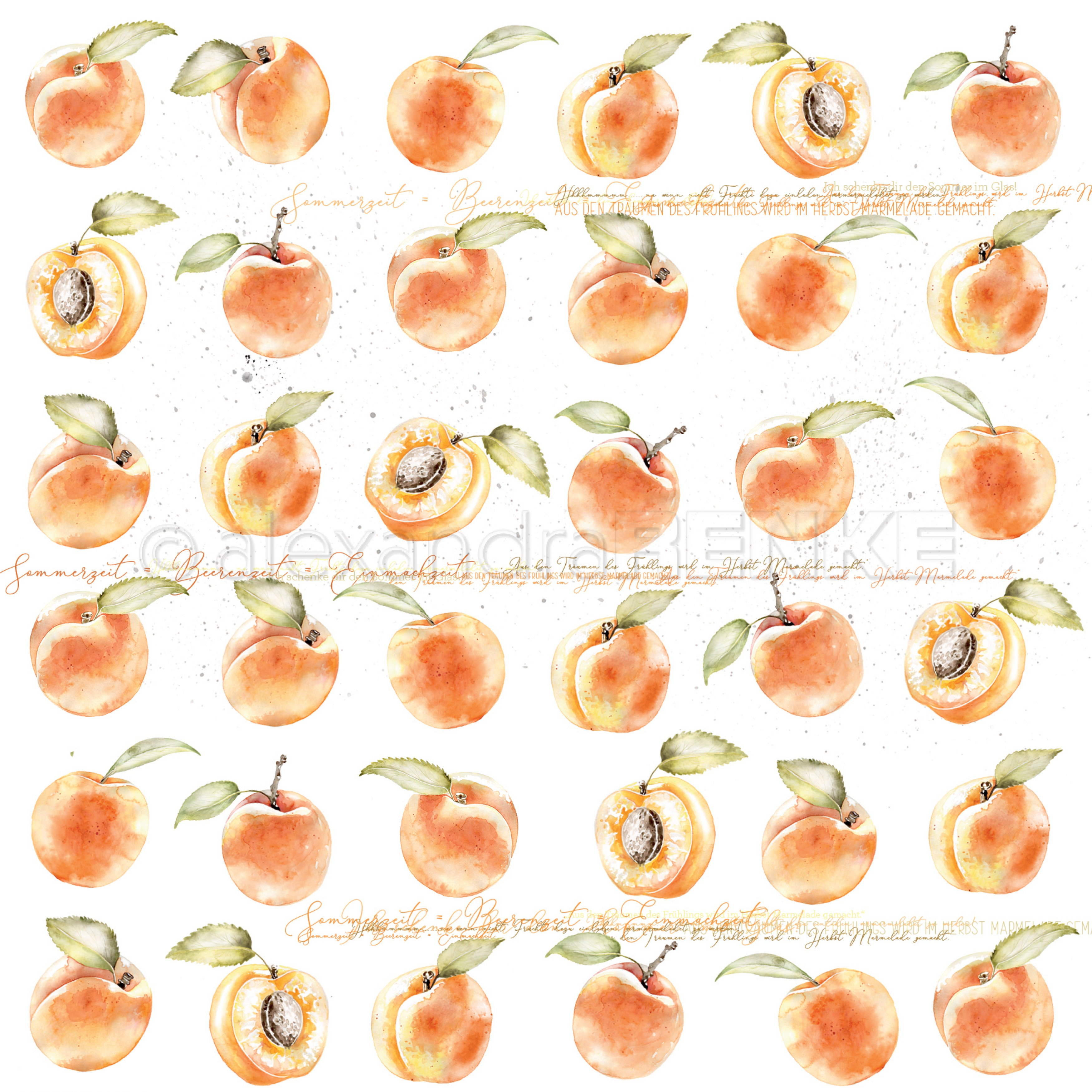 Alexandra Renke cooking cardstock 12X12 - Peaches