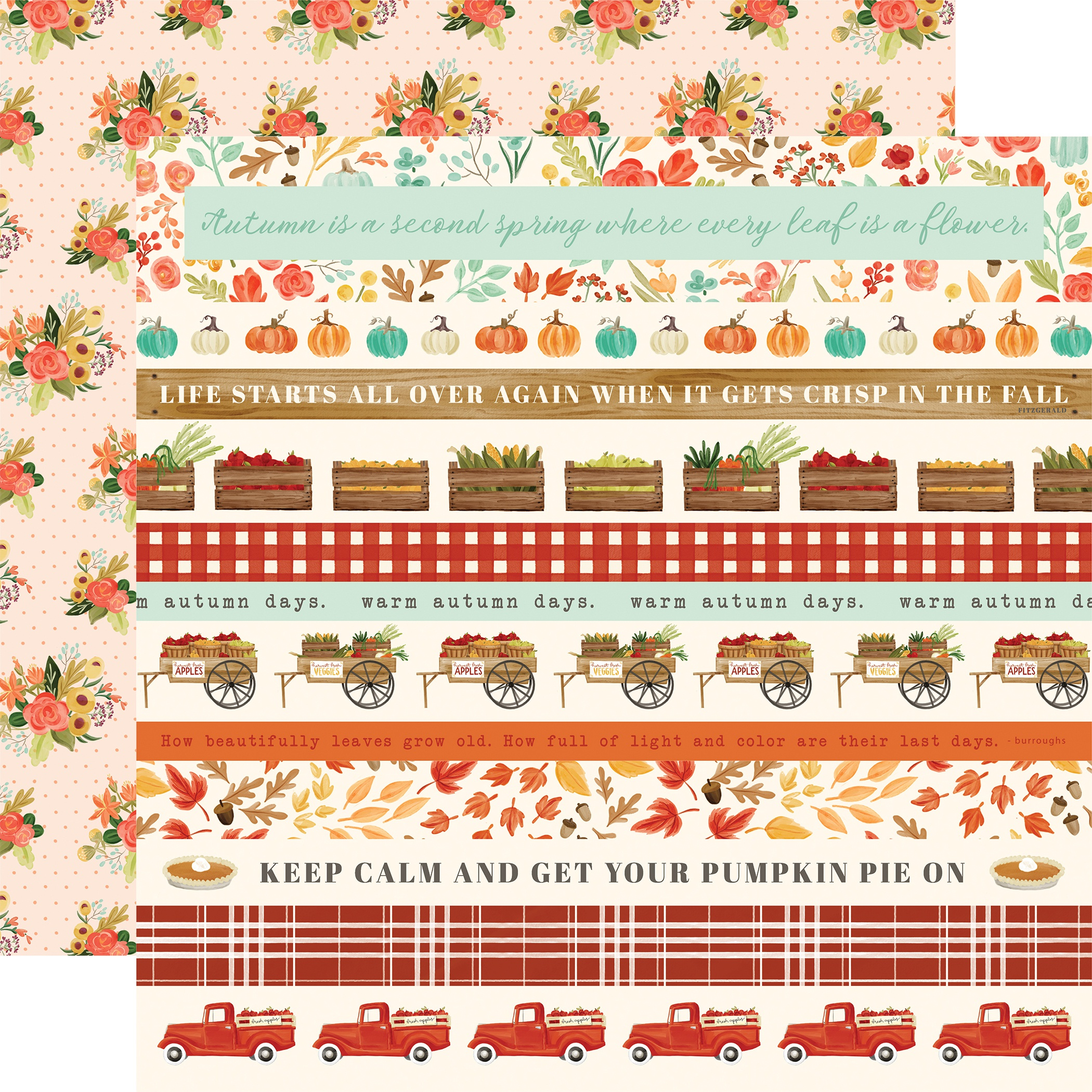 Fall Market Double-Sided Cardstock 12X12-Border Strips