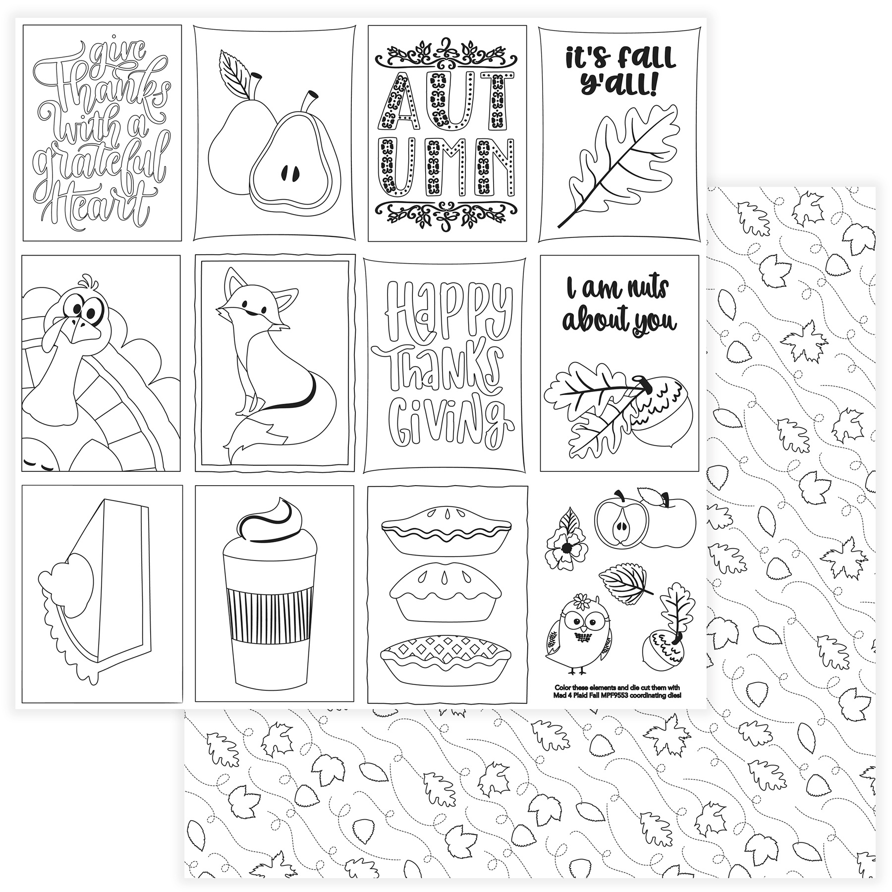 Mad 4 Plaid Fall Double-Sided Cardstock 12X12-Black & White Color Me Cards