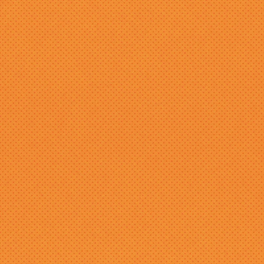 Autumn Splendor Double-Sided Cardstock 12X12-Rust/Dots Simple Basic