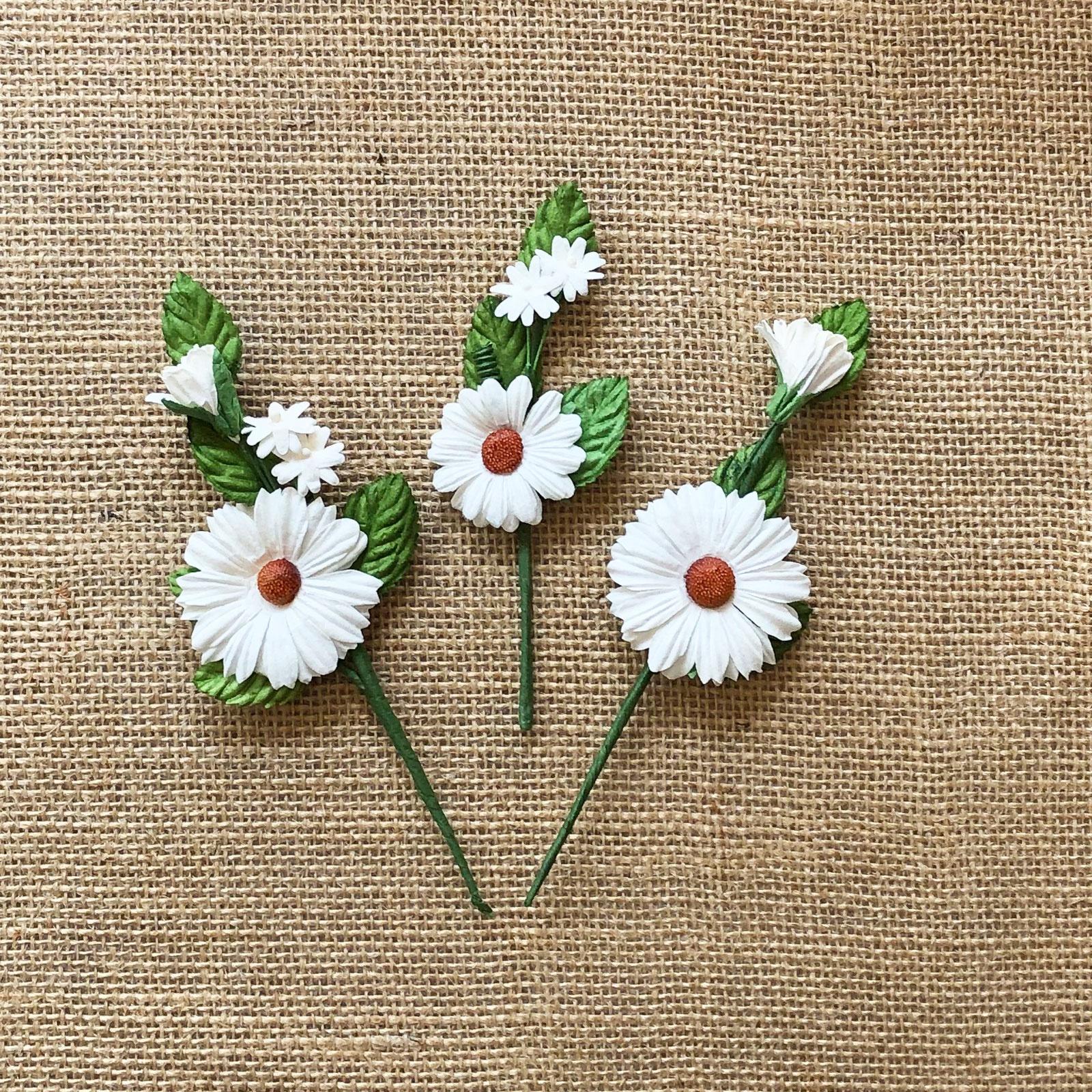 Daisy Stems- White