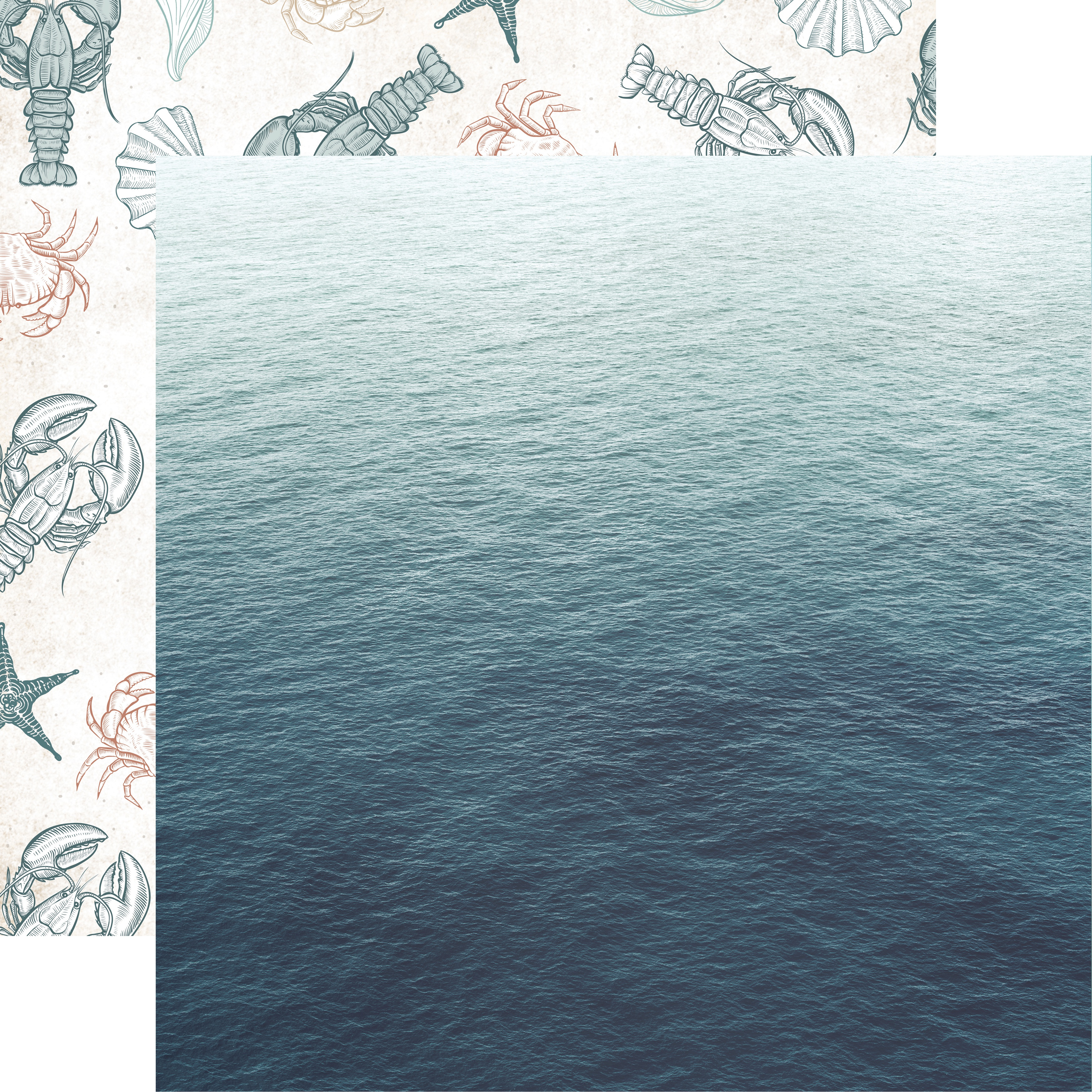 Kc Oceanic