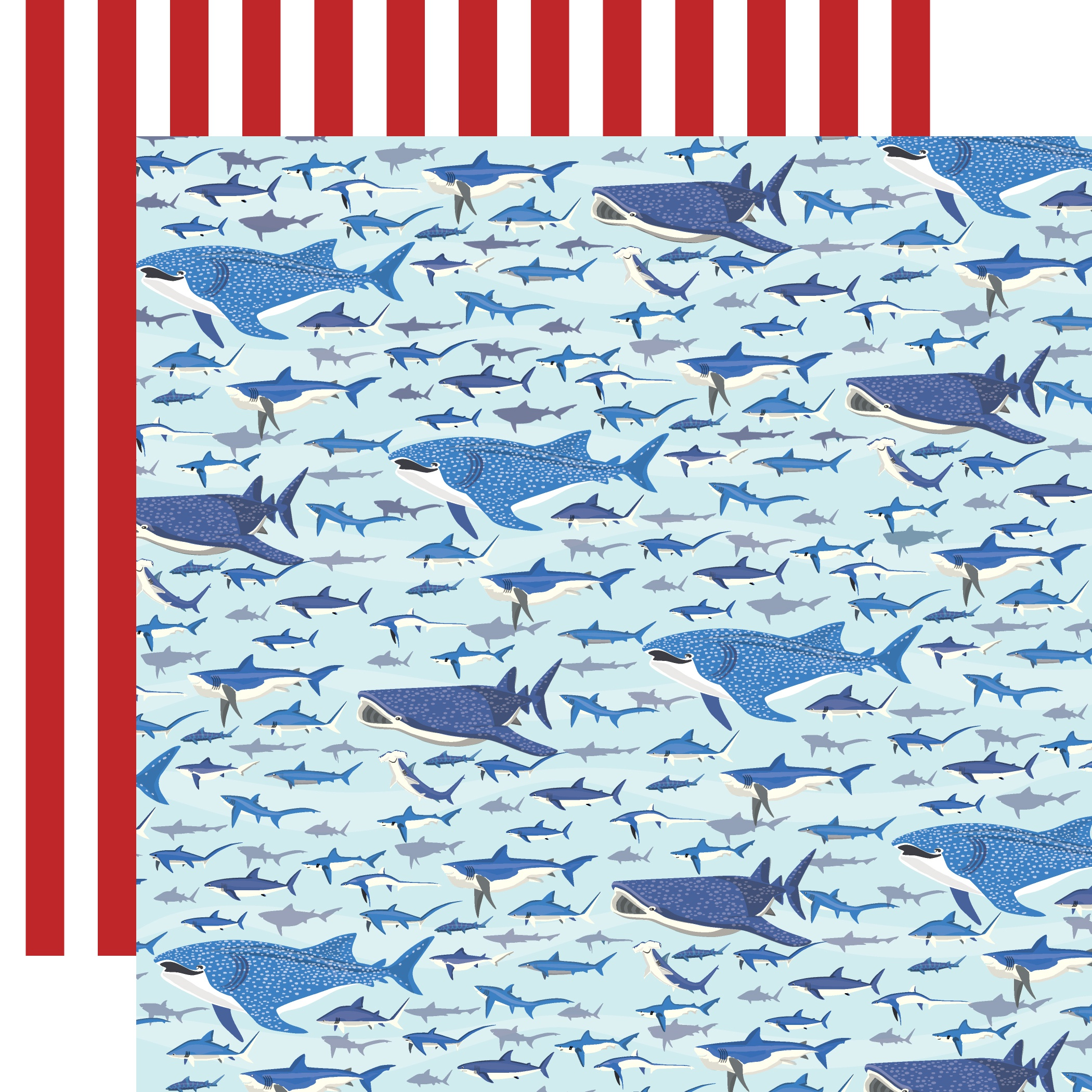 Fish Are Friends Double-Sided Cardstock 12X12-Shark Swim