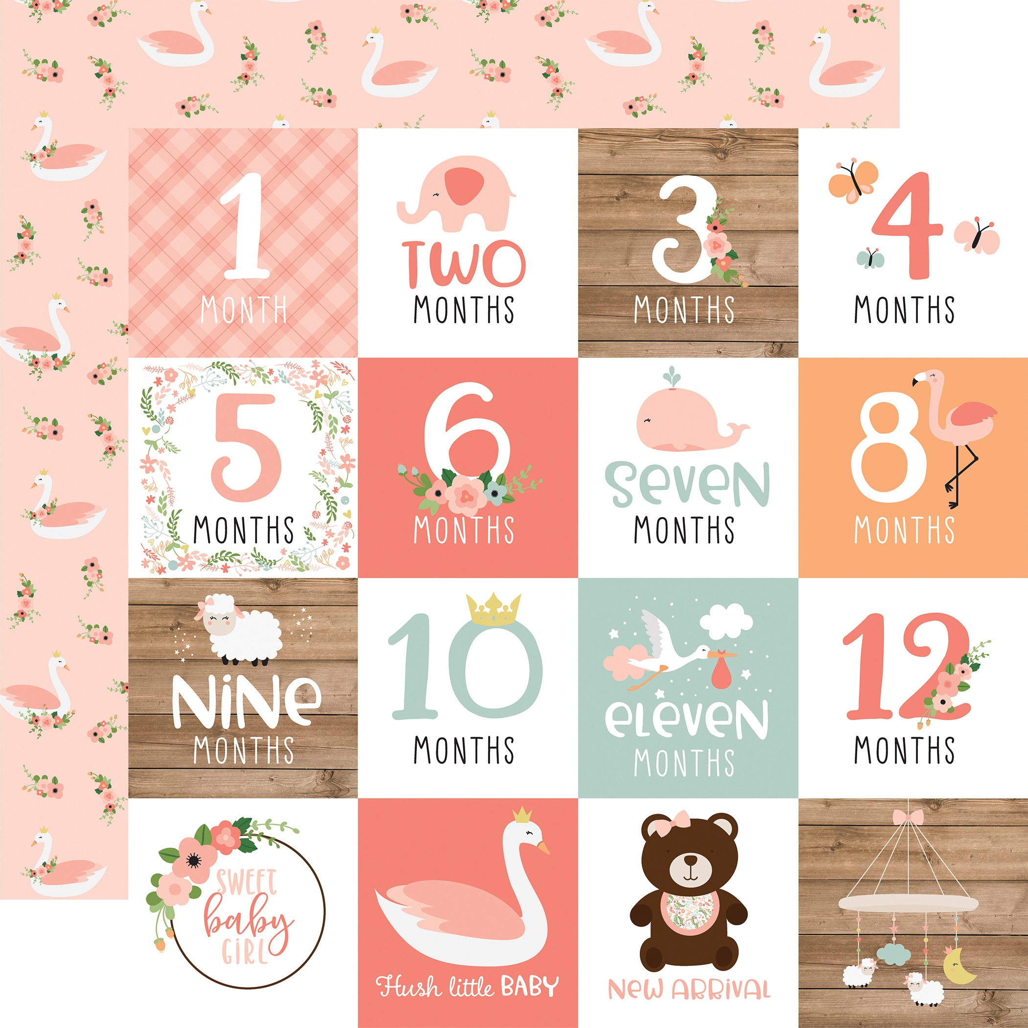 Baby Girl Double-Sided Cardstock 12X12-Milestone Cards