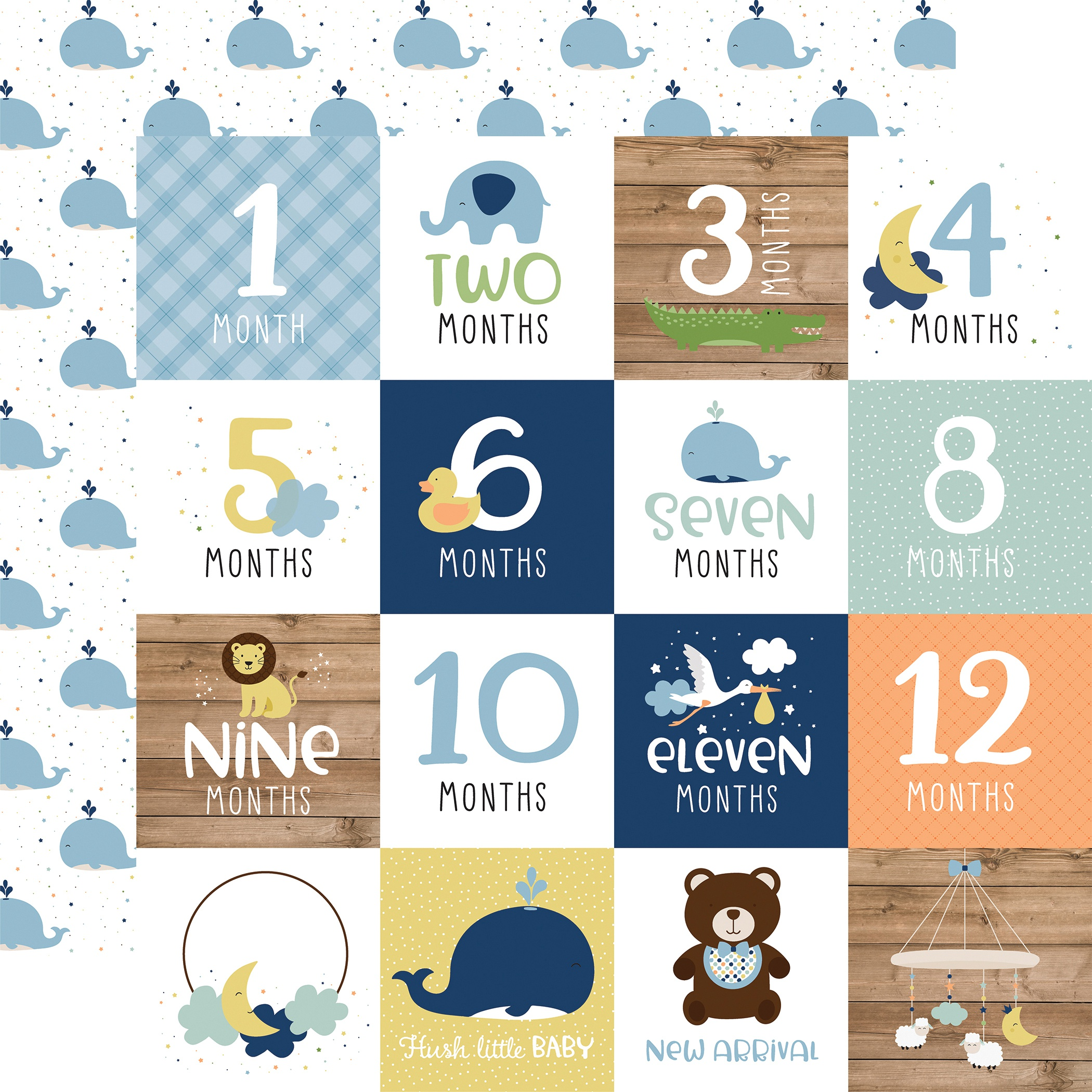 Baby Boy Double-Sided Cardstock 12X12-Milestone Cards