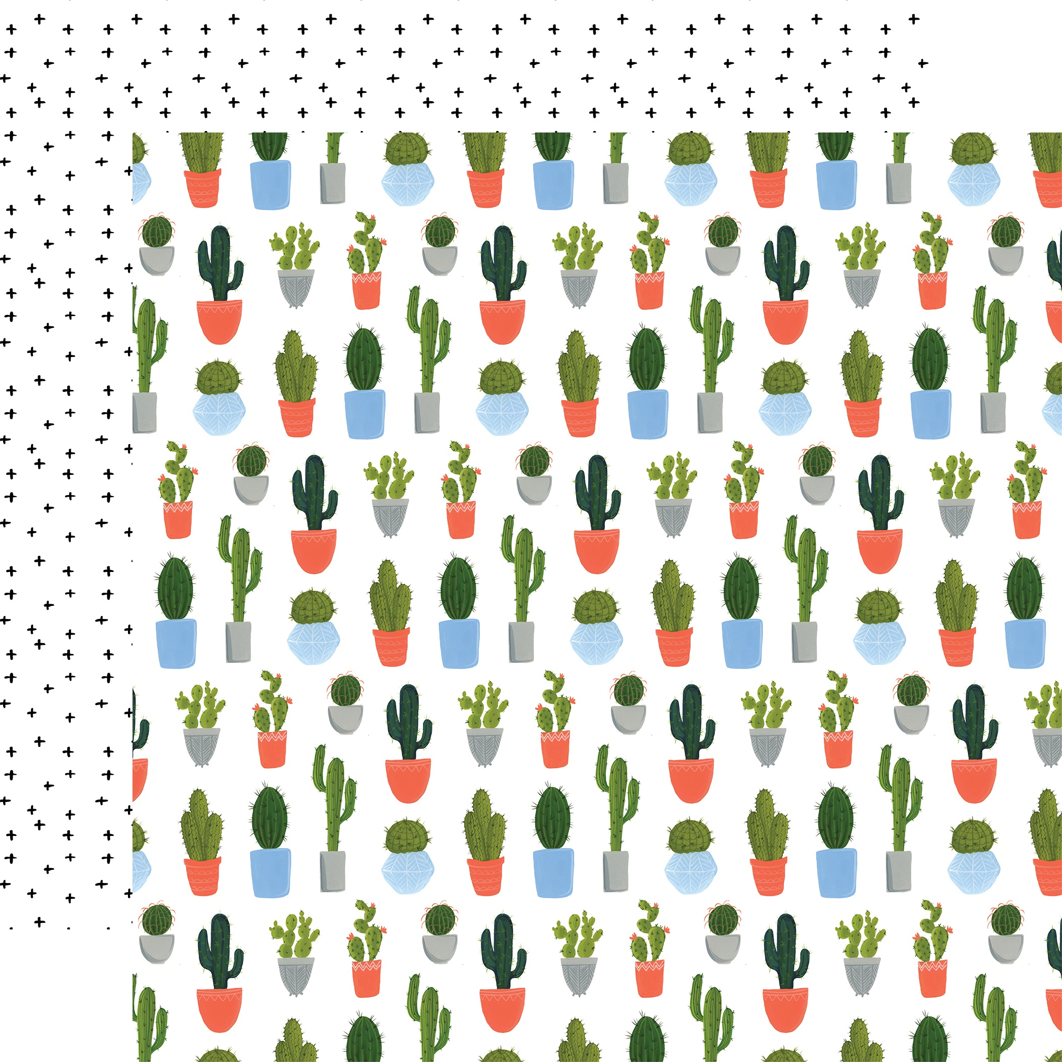 Plant Lady Double-Sided Cardstock 12X12-Cacti