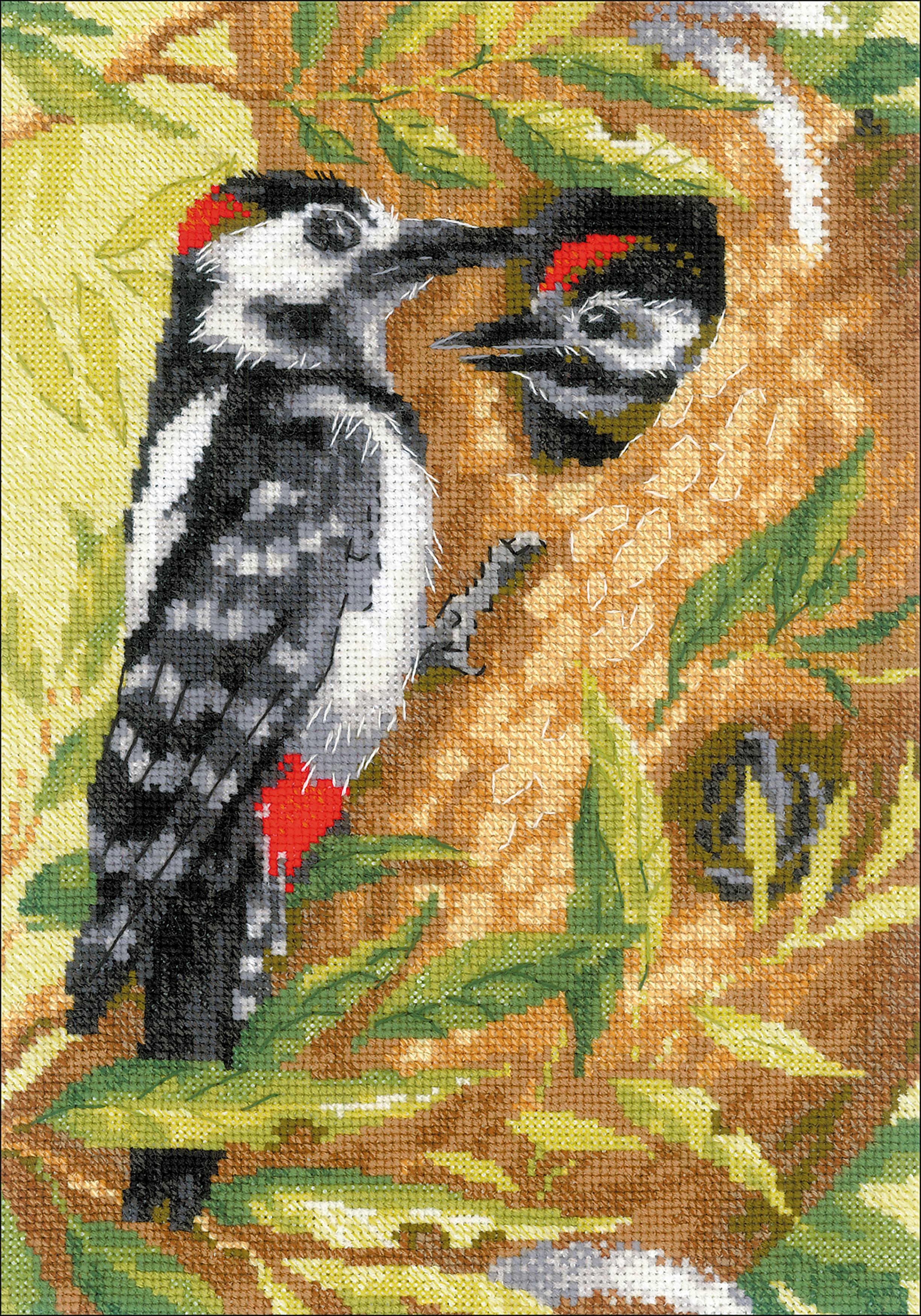 woodpecker CXX