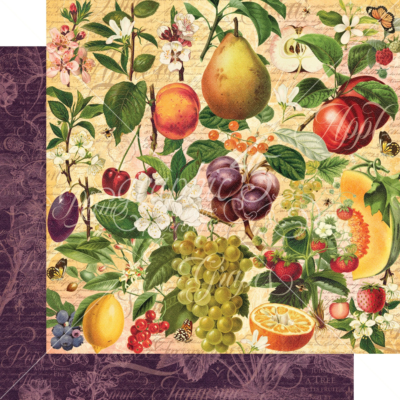 Fruit & Flora Double-Sided Cardstock 12X12-Nature's Bounty