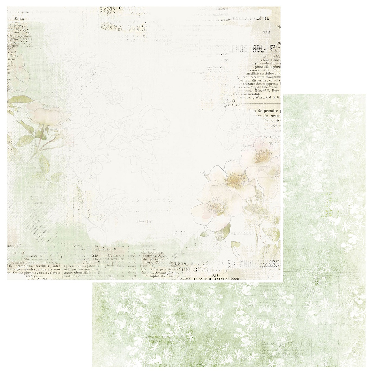 49 And Market - Vintage Artistry Sage - DELICATE - 12x12 Double-Sided Paper