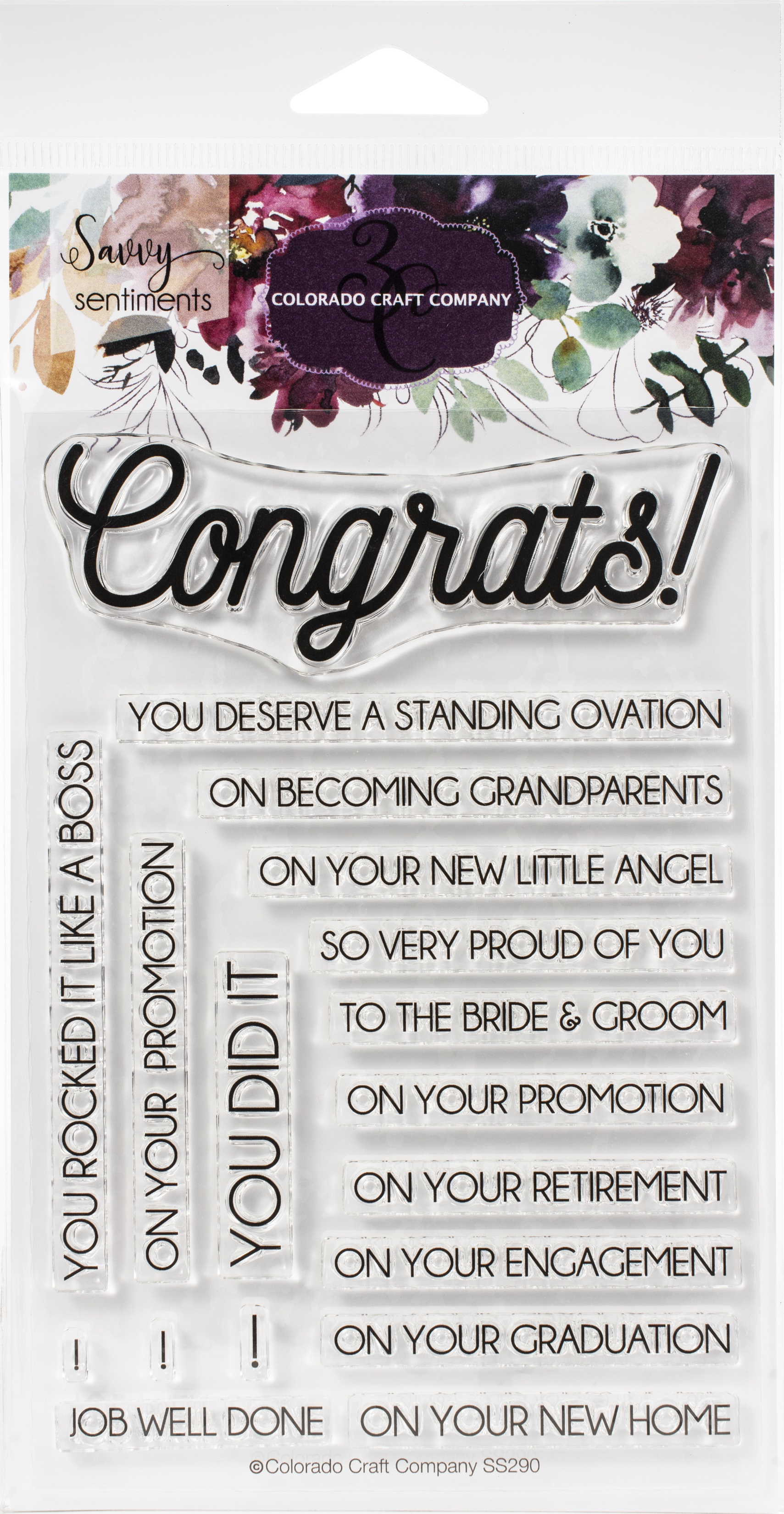 Colorado Craft Company Clear Stamps 4X6-Congrats Everything-Savvy Sentiments