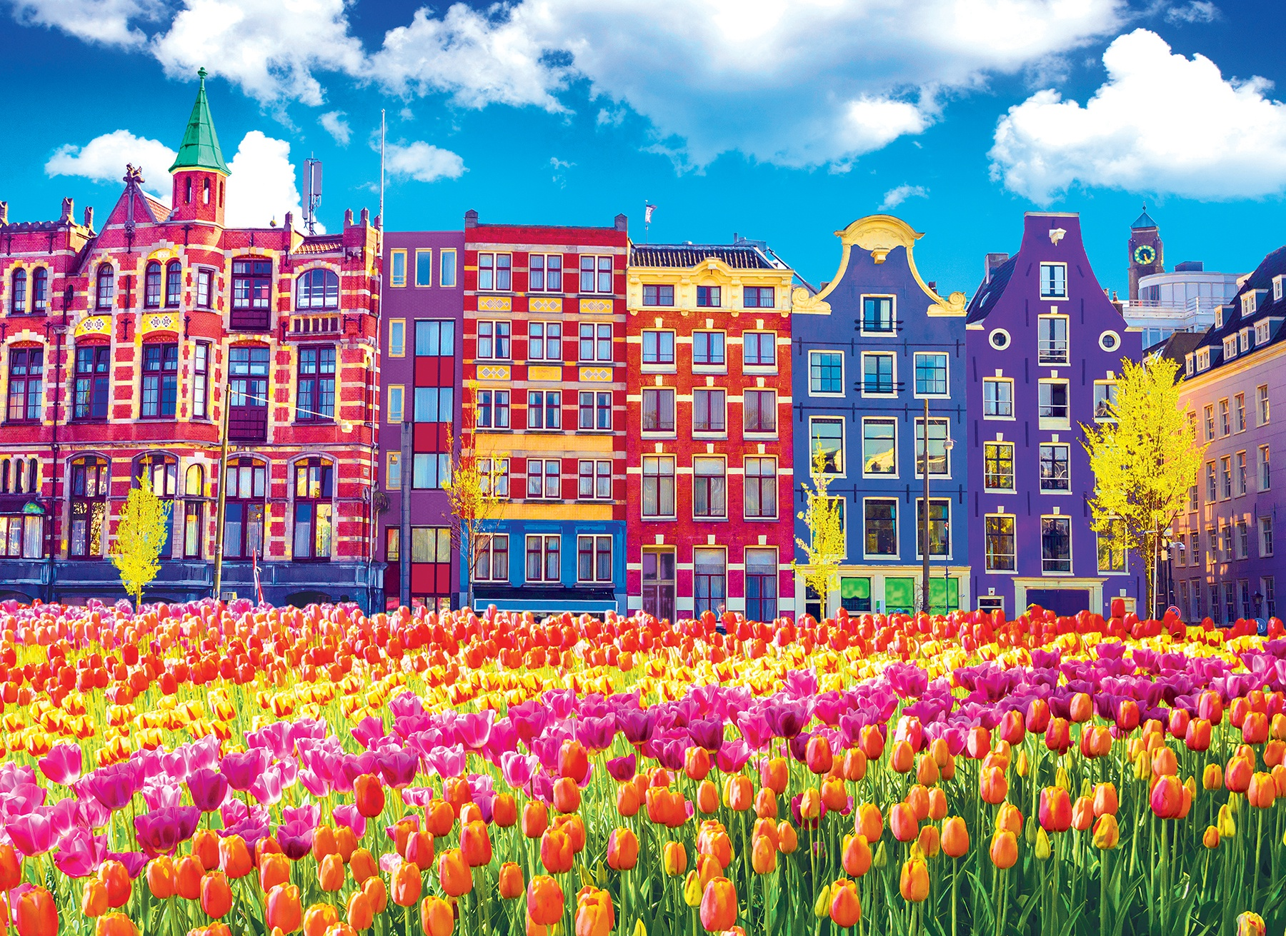 Premium Jigsaw Puzzle 1000 Pieces 20X27-Buildings And Tulips Amsterdam