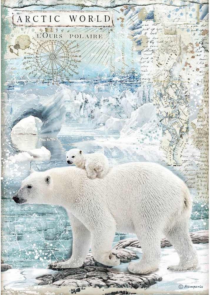 Stamperia Rice Paper Sheet A4-Polar Bears Arctic Antarctic