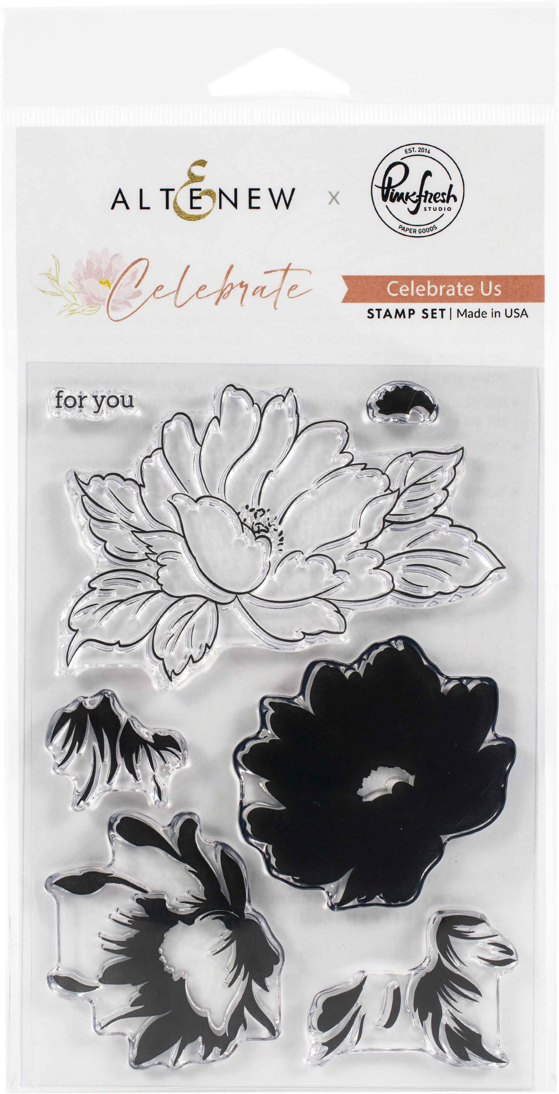 Pinkfresh Studio Clear Stamp Set 4X6-Celebrate Us