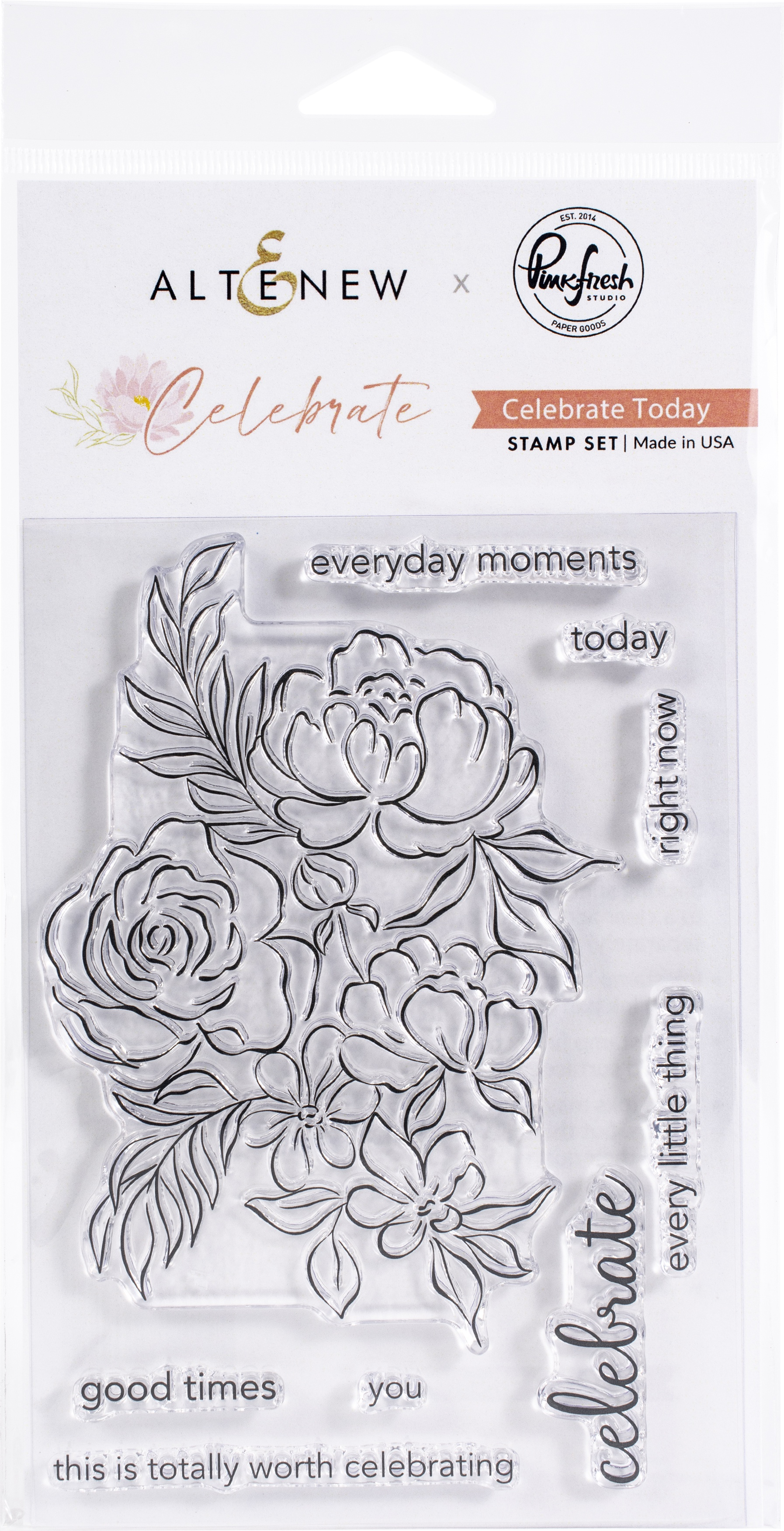 Pinkfresh Studio Clear Stamp Set 4X6-Celebrate Today