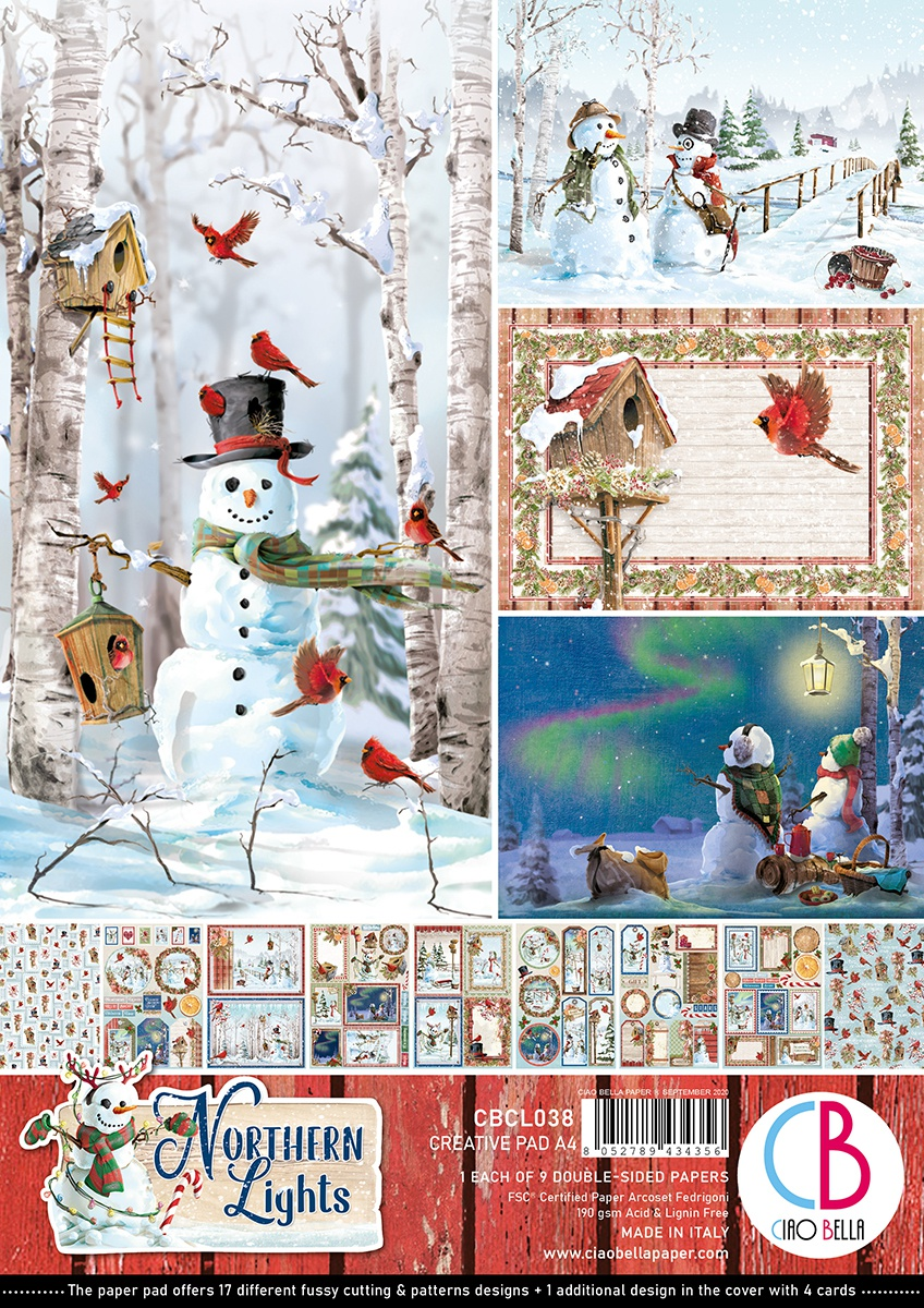 Ciao Bella Double-Sided Creative Pack 90lb A4 9/Pkg-Northern Lights, 9 Designs/1 Each